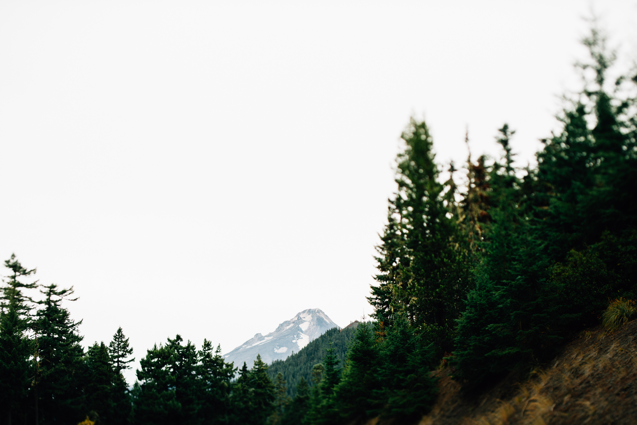The Ryans Photography - Mt. Hood Oregon Adventure-001.jpg