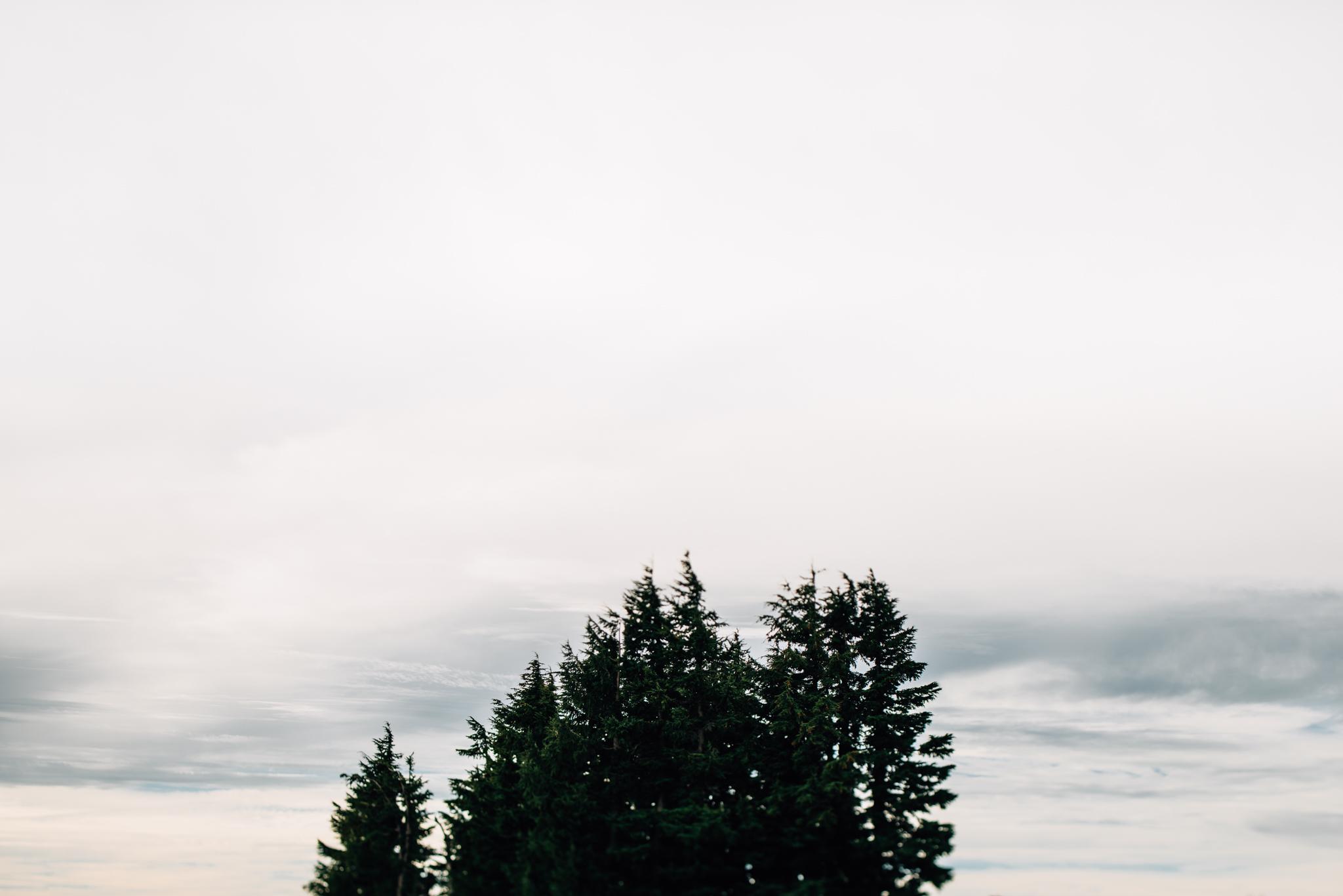 The Ryans Photography - Mt. Hood Oregon Adventure-004.jpg