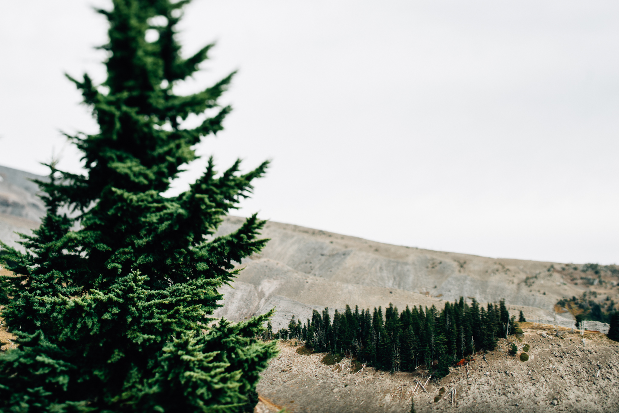 The Ryans Photography - Mt. Hood Oregon Adventure-010.jpg