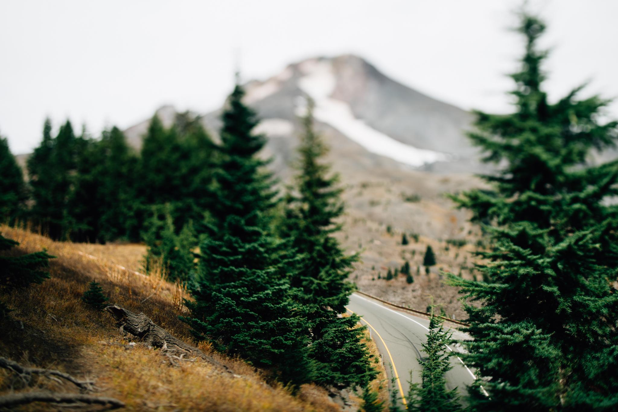 The Ryans Photography - Mt. Hood Oregon Adventure-011.jpg