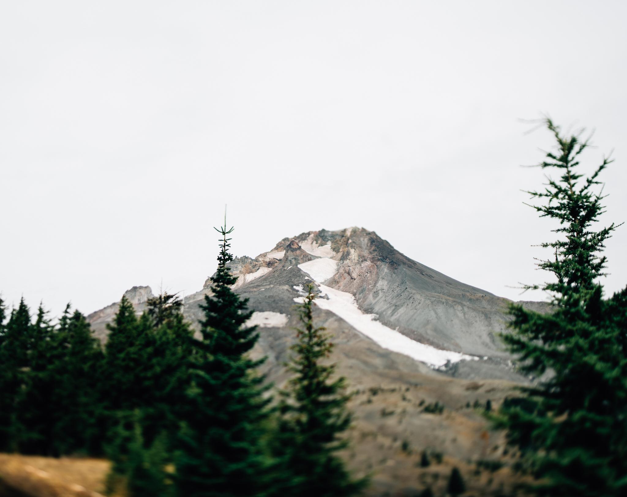 The Ryans Photography - Mt. Hood Oregon Adventure-012.jpg