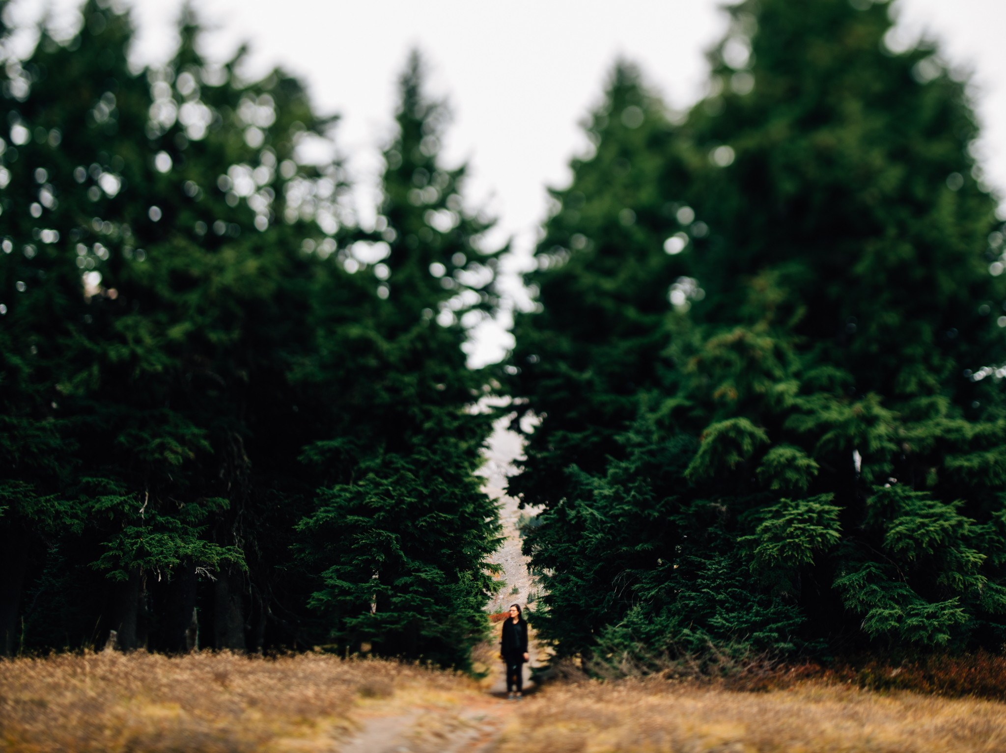 The Ryans Photography - Mt. Hood Oregon Adventure-017.jpg