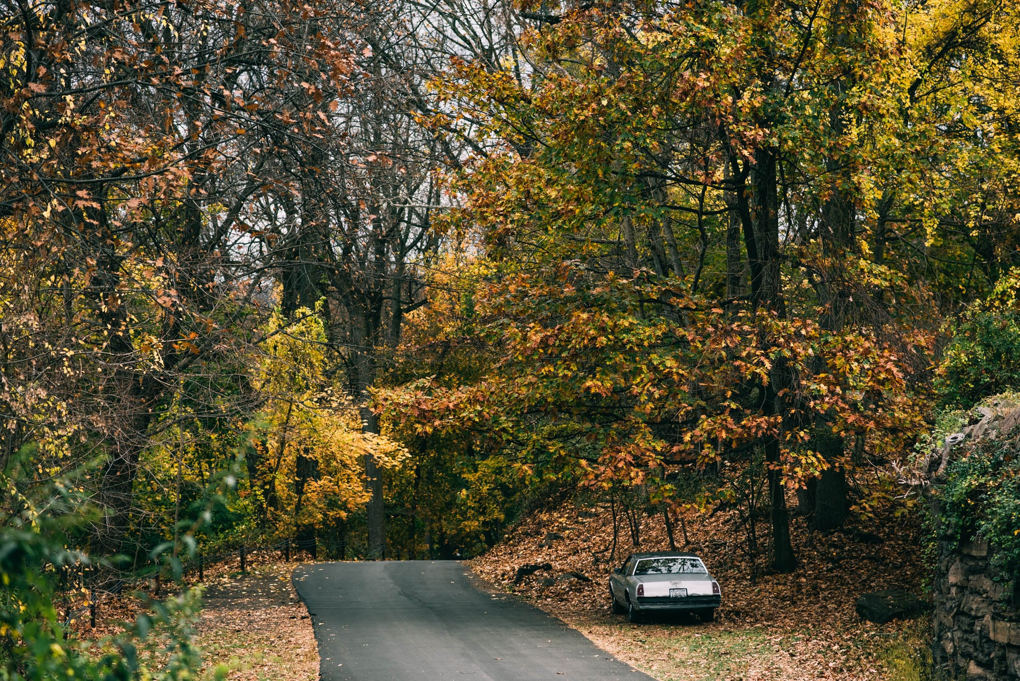 ©The Ryans Photography - State of New York-10.jpg