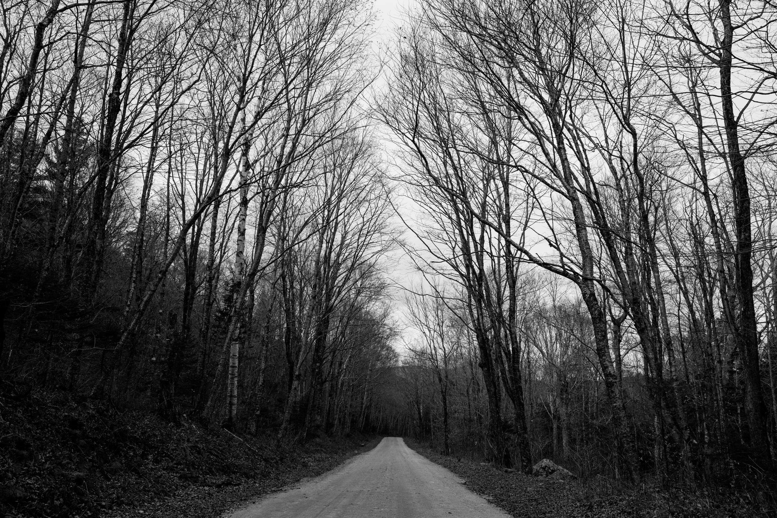 ©The Ryans Photography - White Mountain, New Hampshire Adventure-017.jpg