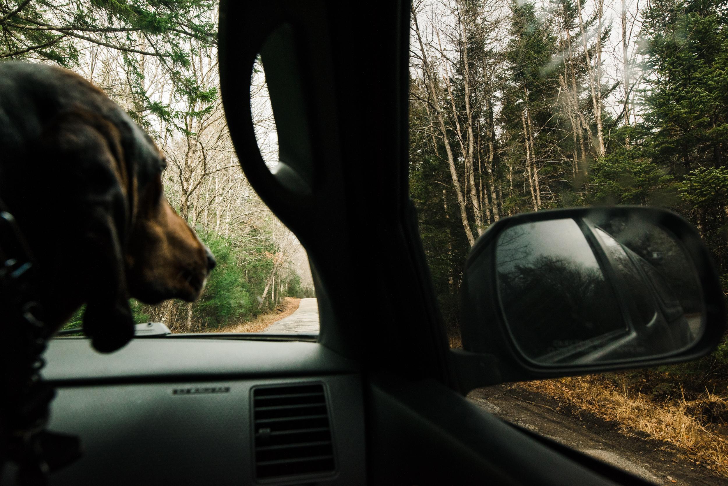 ©The Ryans Photography - White Mountain, New Hampshire Adventure-016.jpg