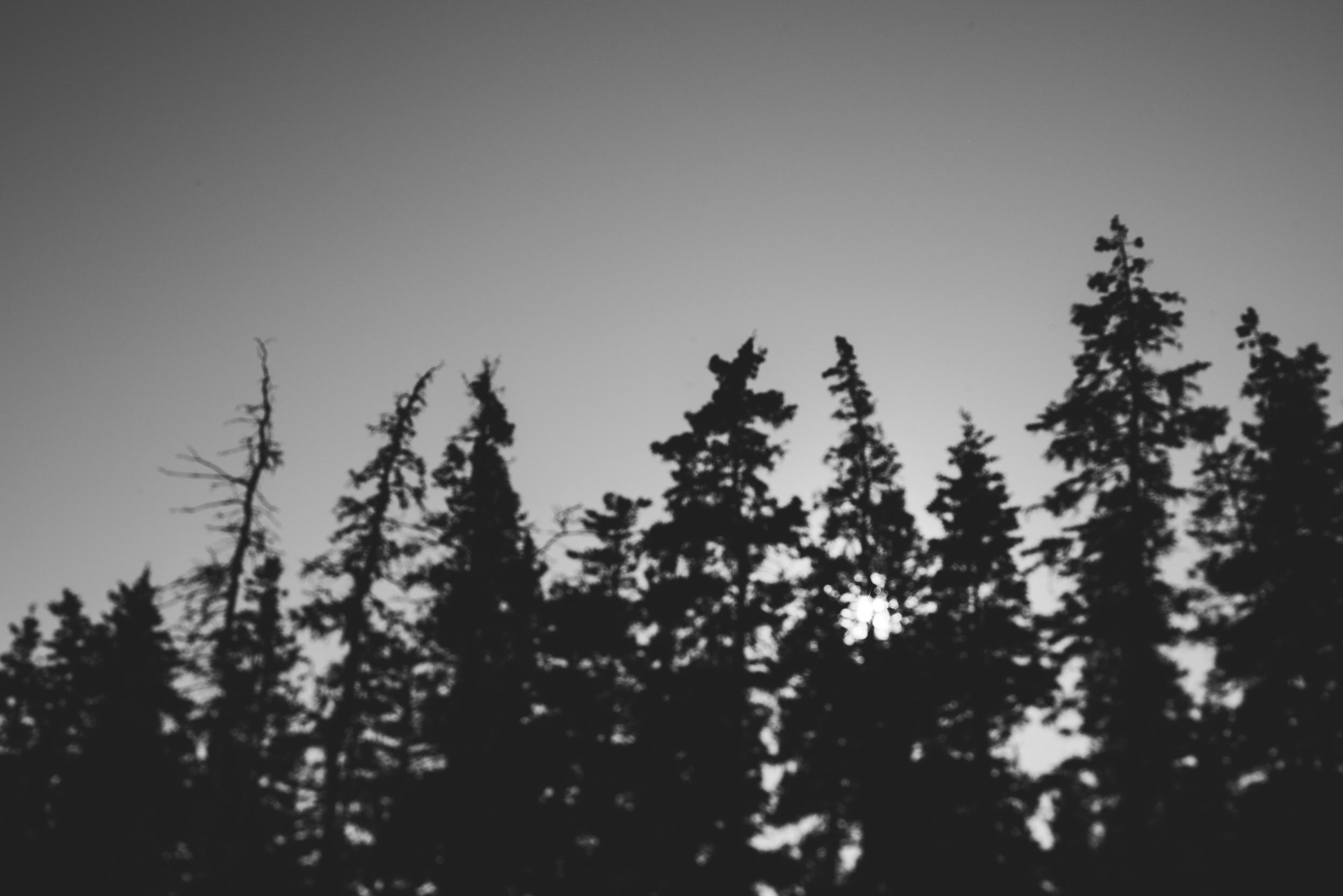 ©The Ryans Photography - Acadia, Maine-030.jpg
