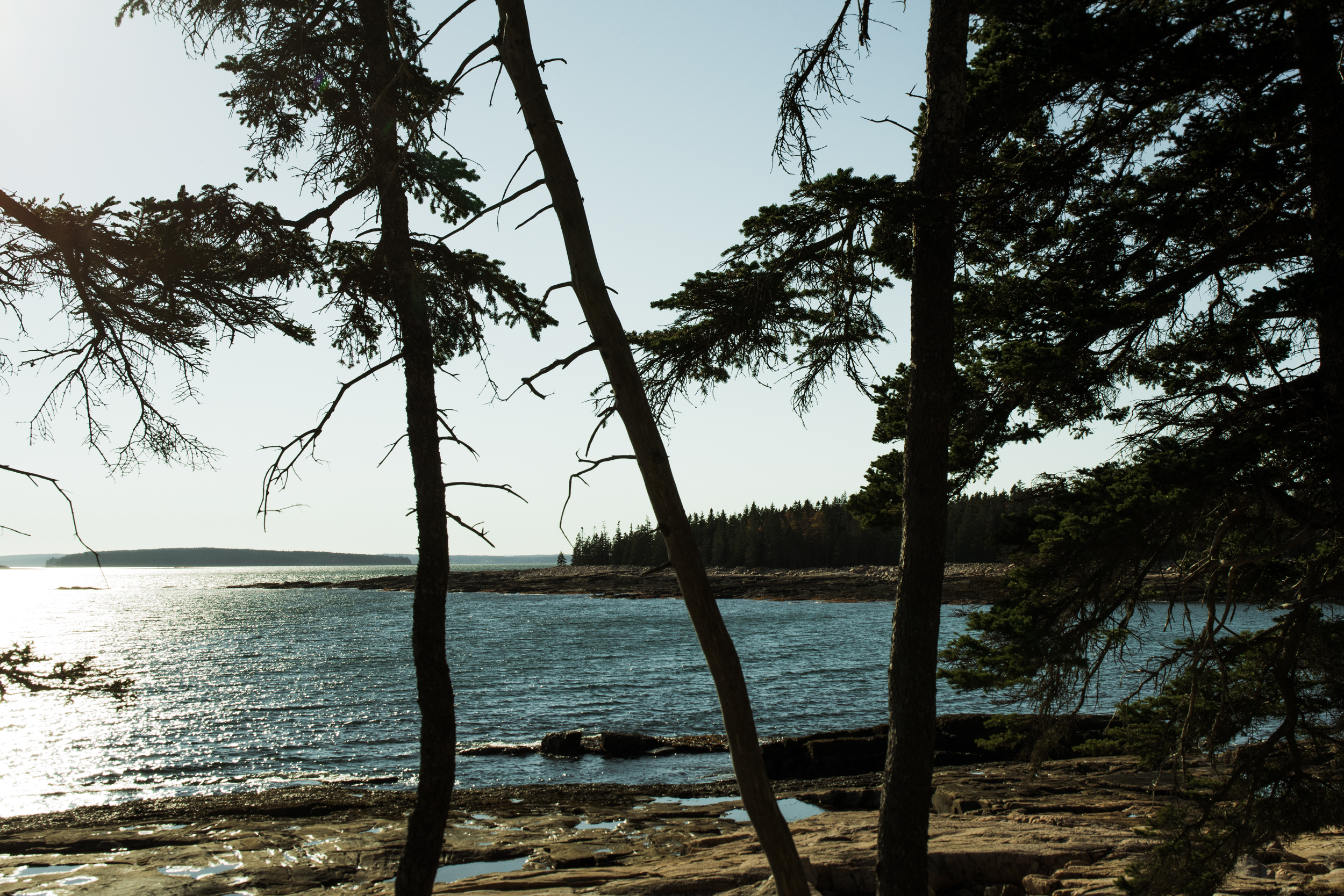 ©The Ryans Photography - Acadia, Maine-033.jpg