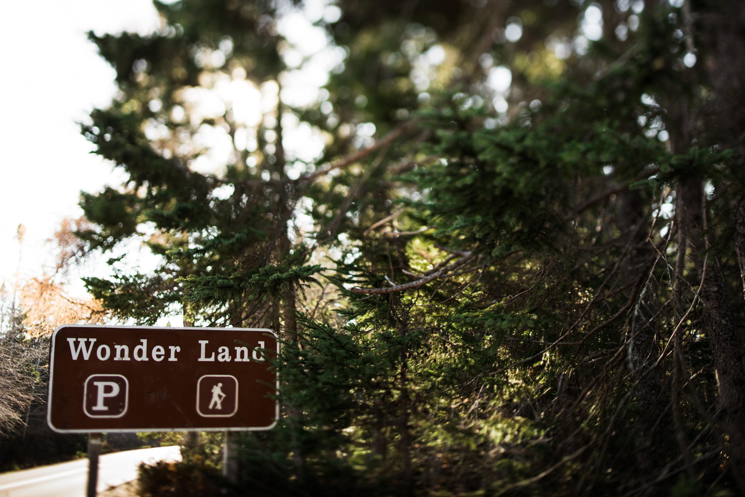 ©The Ryans Photography - Acadia, Maine-038.jpg