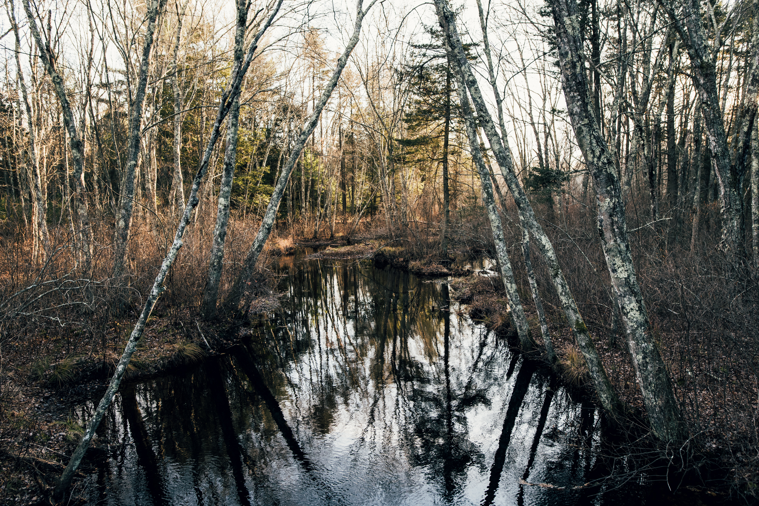 ©The Ryans Photography - Conneticut Camping Autumn-014.jpg