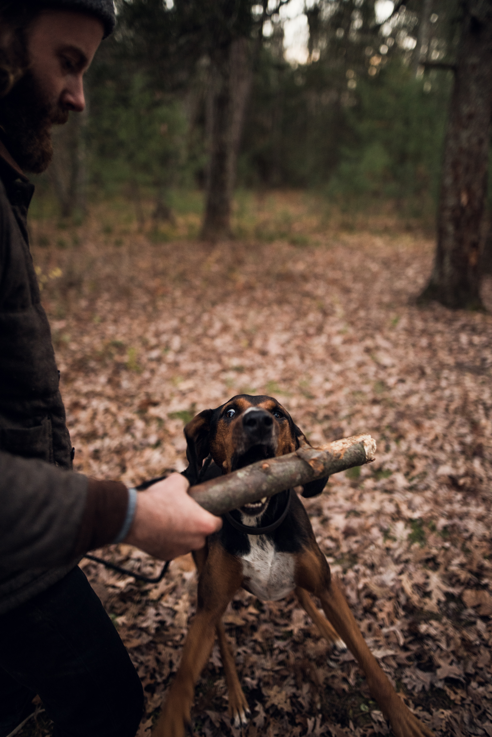 ©The Ryans Photography - Conneticut Camping Autumn-027.jpg