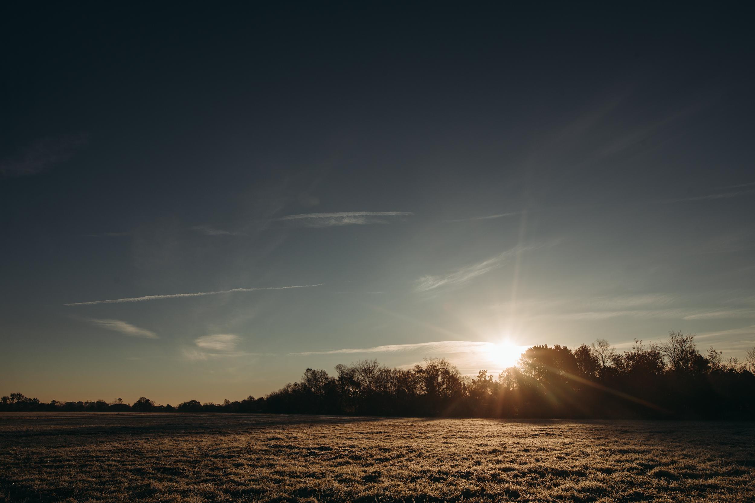 ©The Ryans Photography - North Carolina Swamp-002.jpg