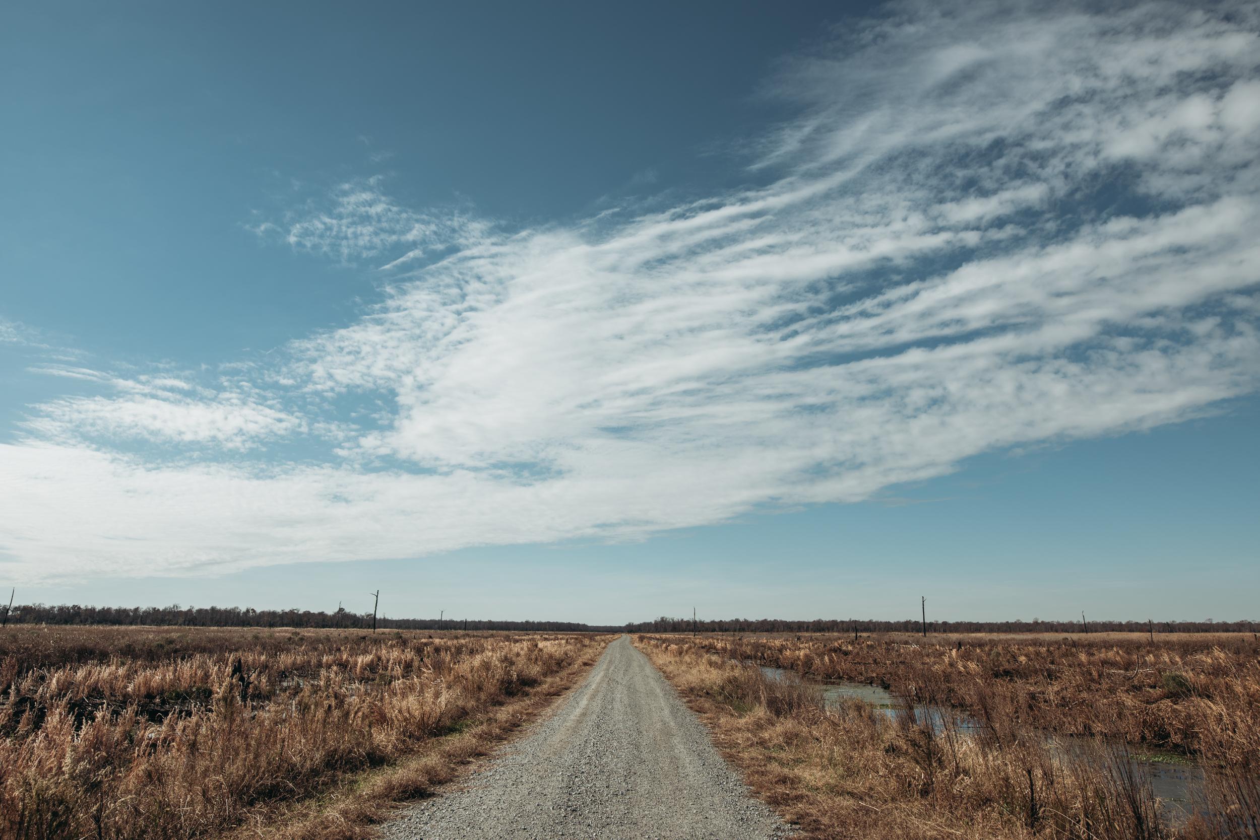 ©The Ryans Photography - North Carolina Swamp-042.jpg