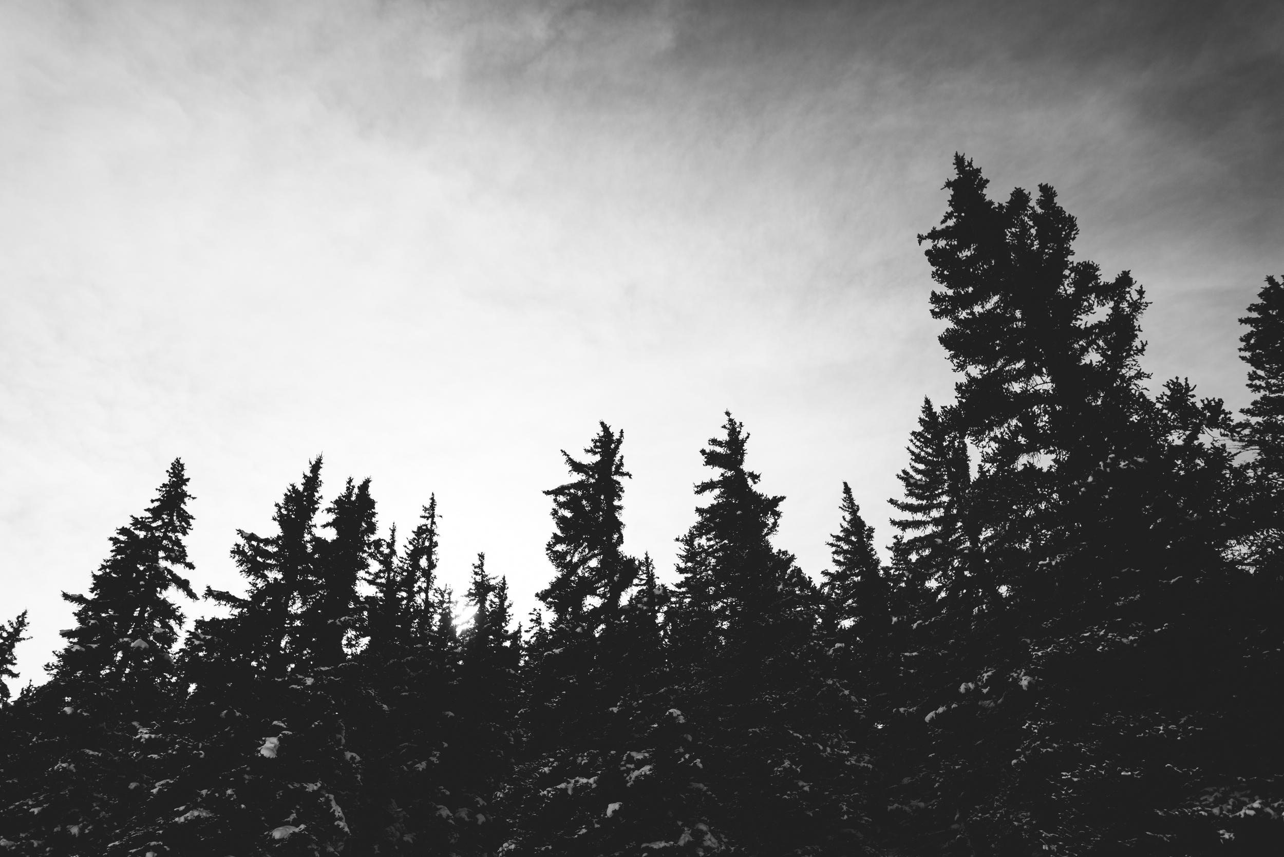 ©The Ryans Photography - Colordado Winter-021.jpg