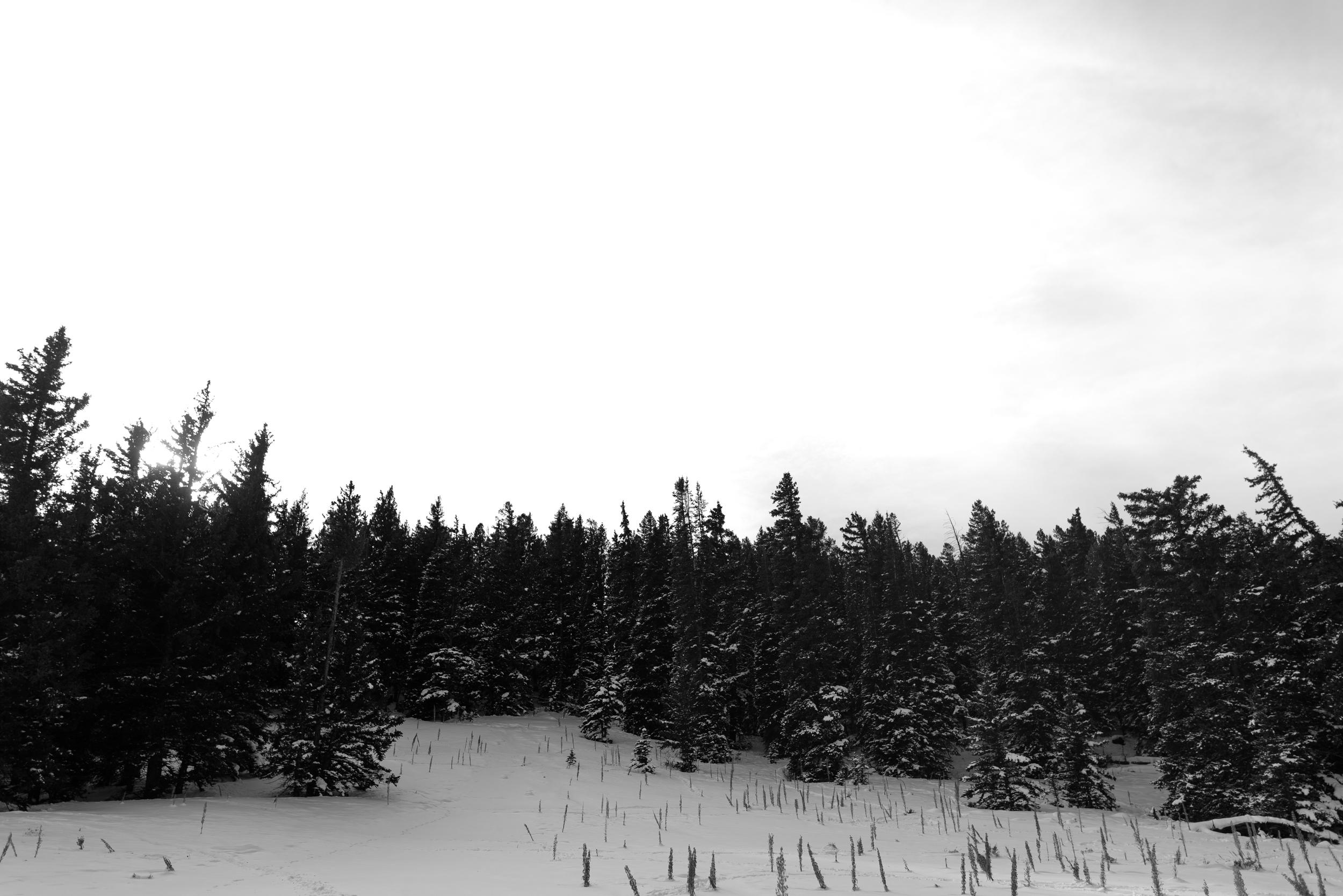 ©The Ryans Photography - Colordado Winter-023.jpg