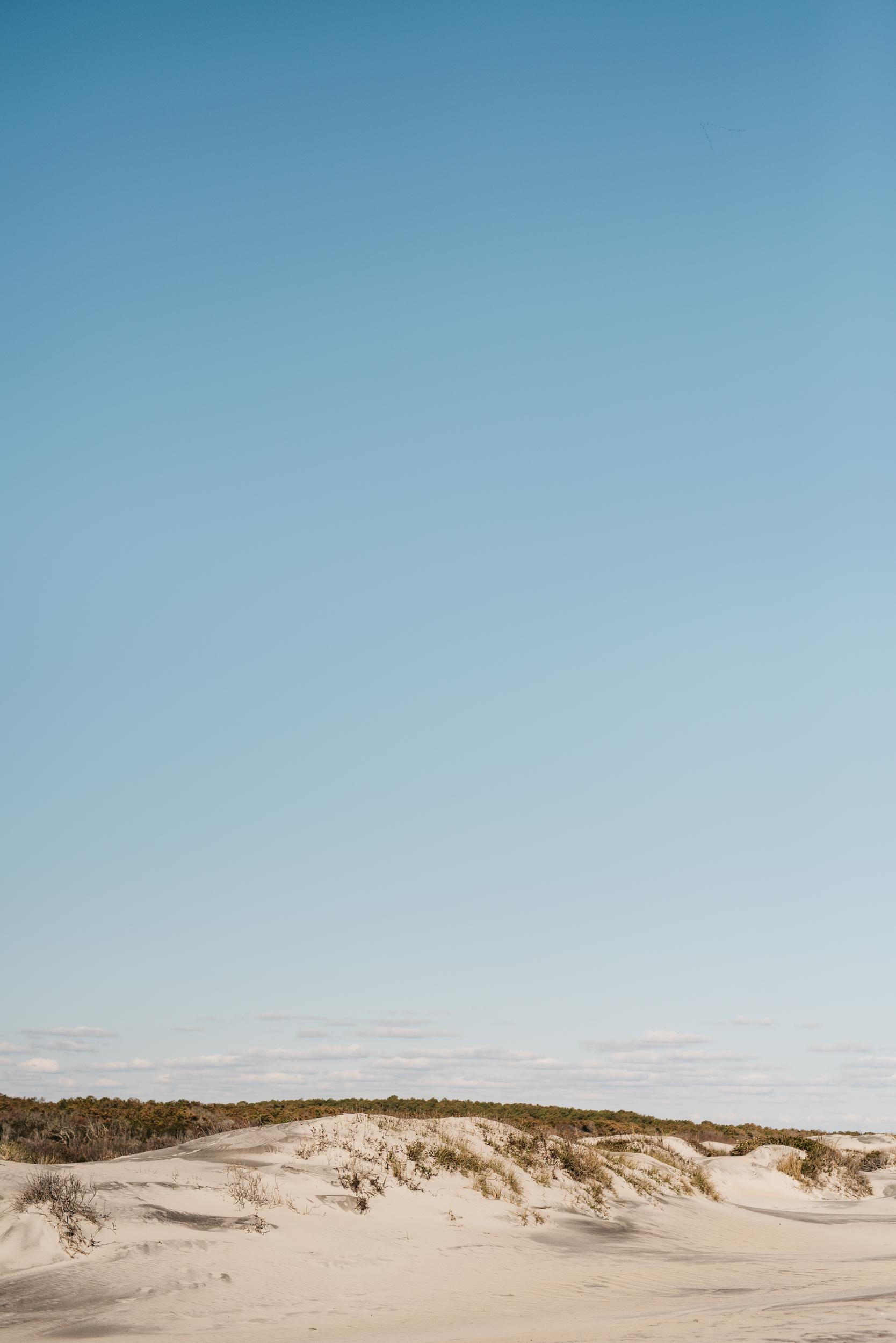 ©The Ryans Photography - Assateague Island-017.jpg