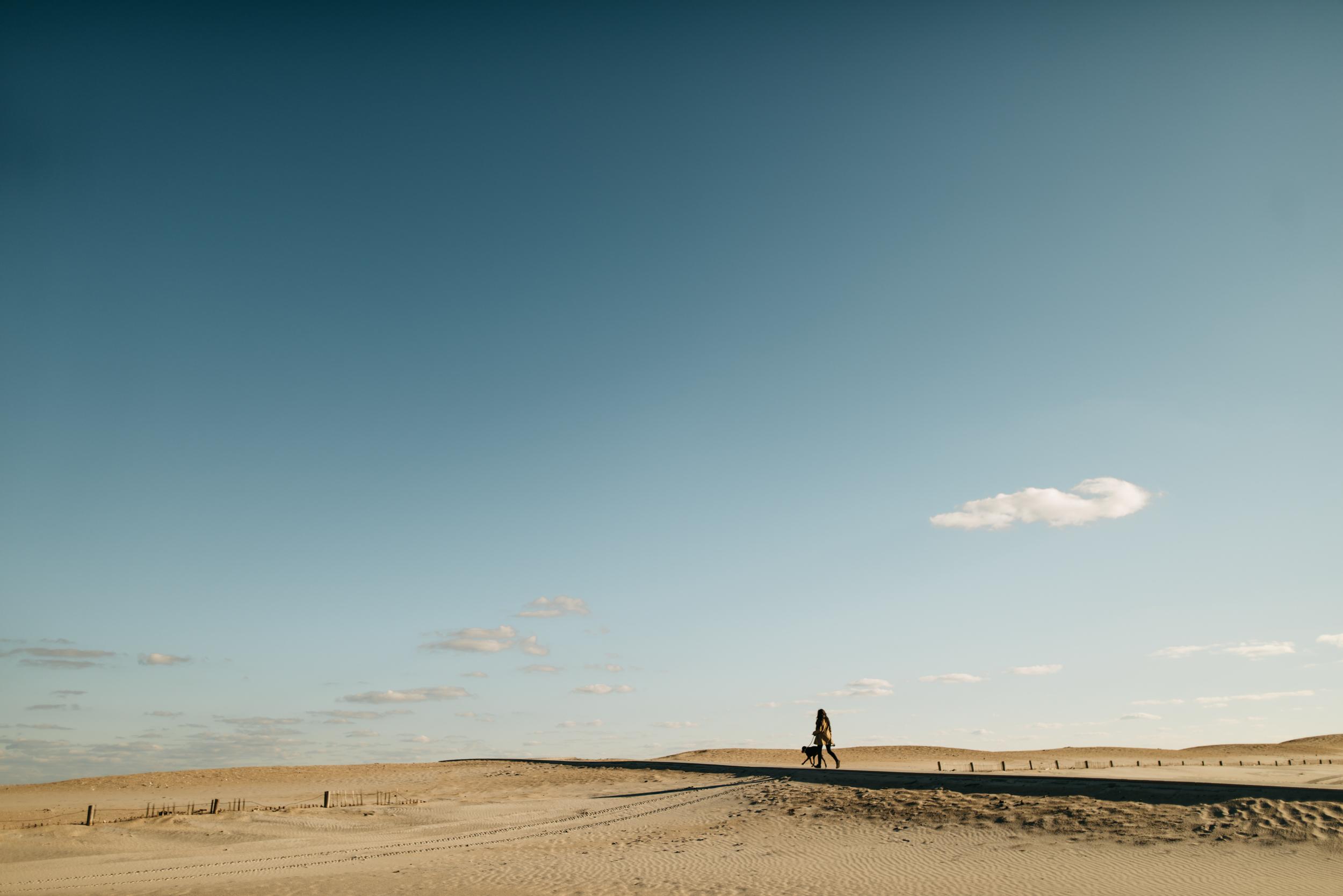 ©The Ryans Photography - Assateague Island-019.jpg