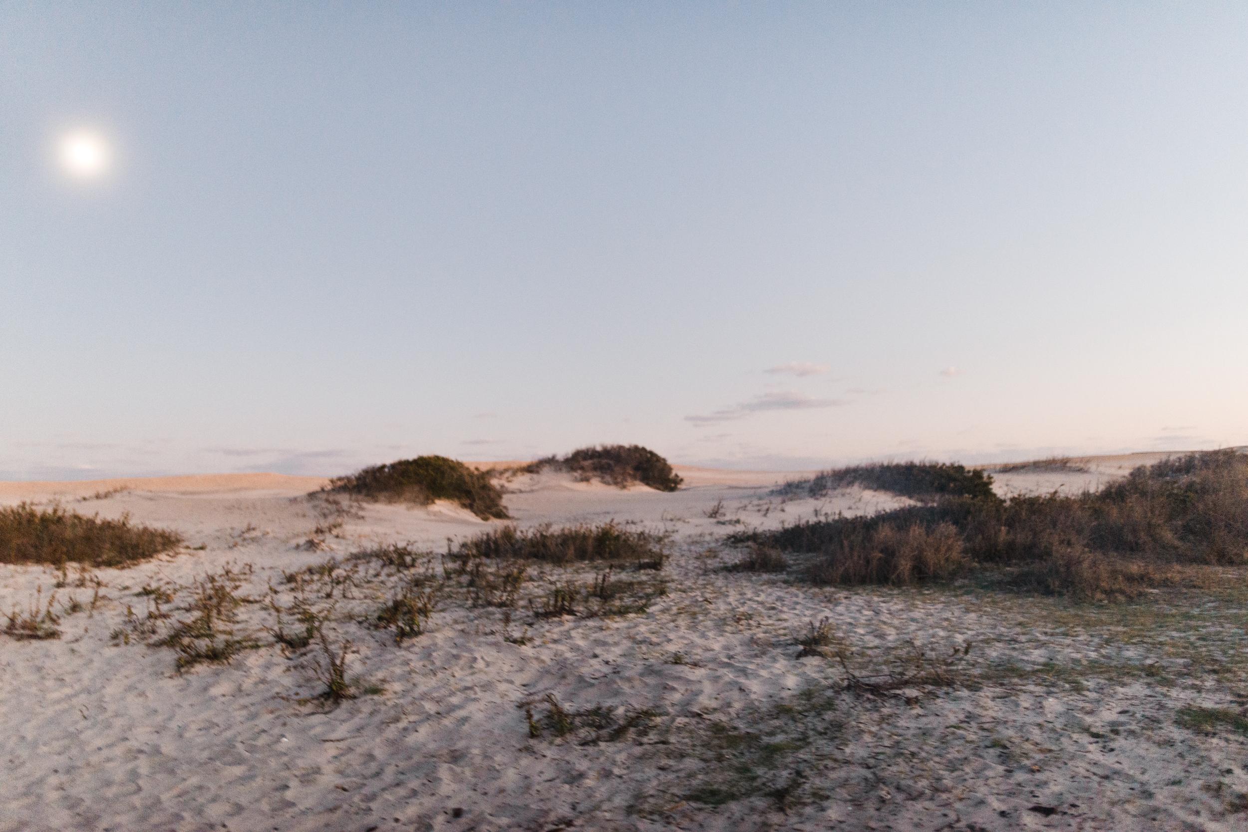 ©The Ryans Photography - Assateague Island-026.jpg