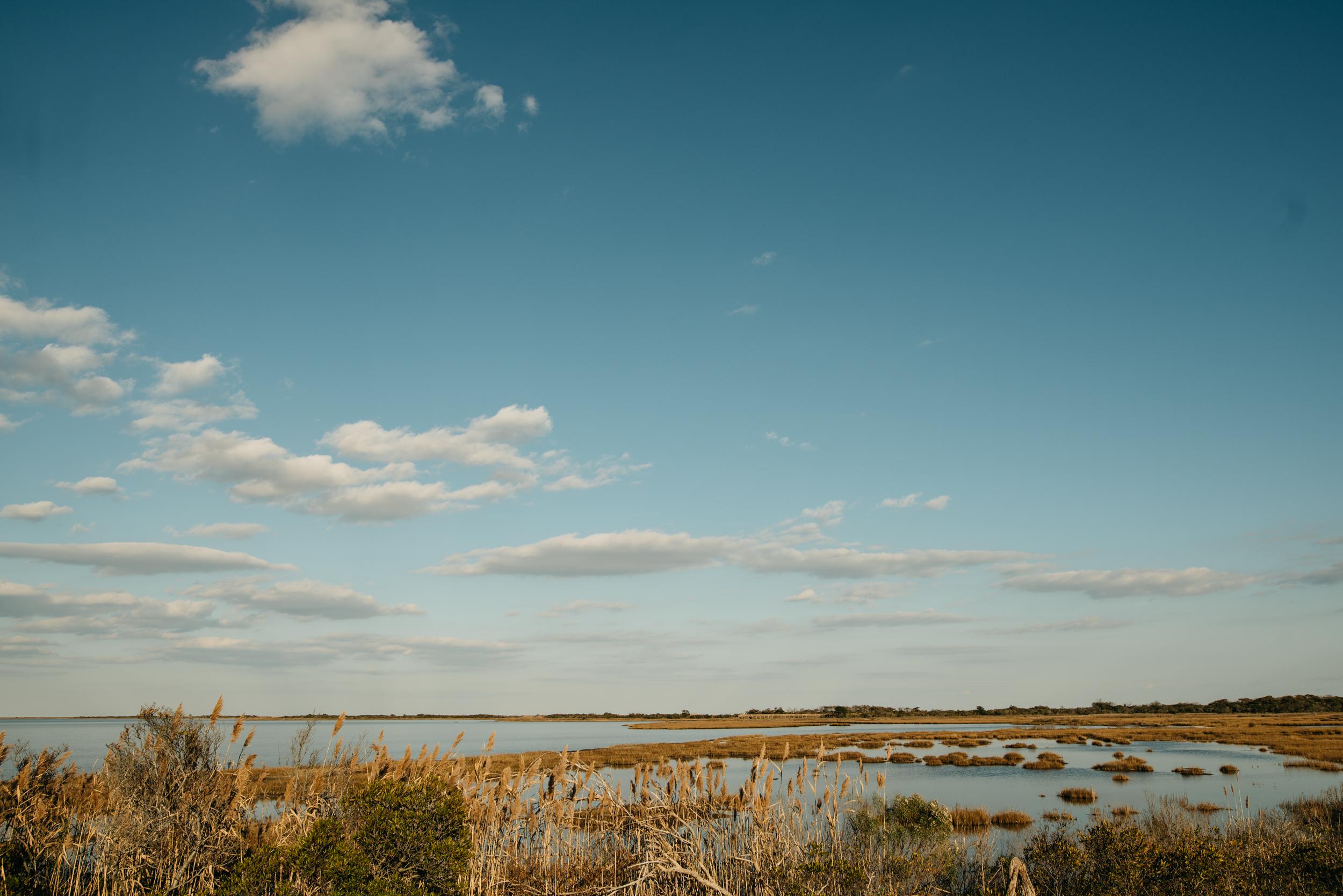 ©The Ryans Photography - Assateague Island-005-2.jpg