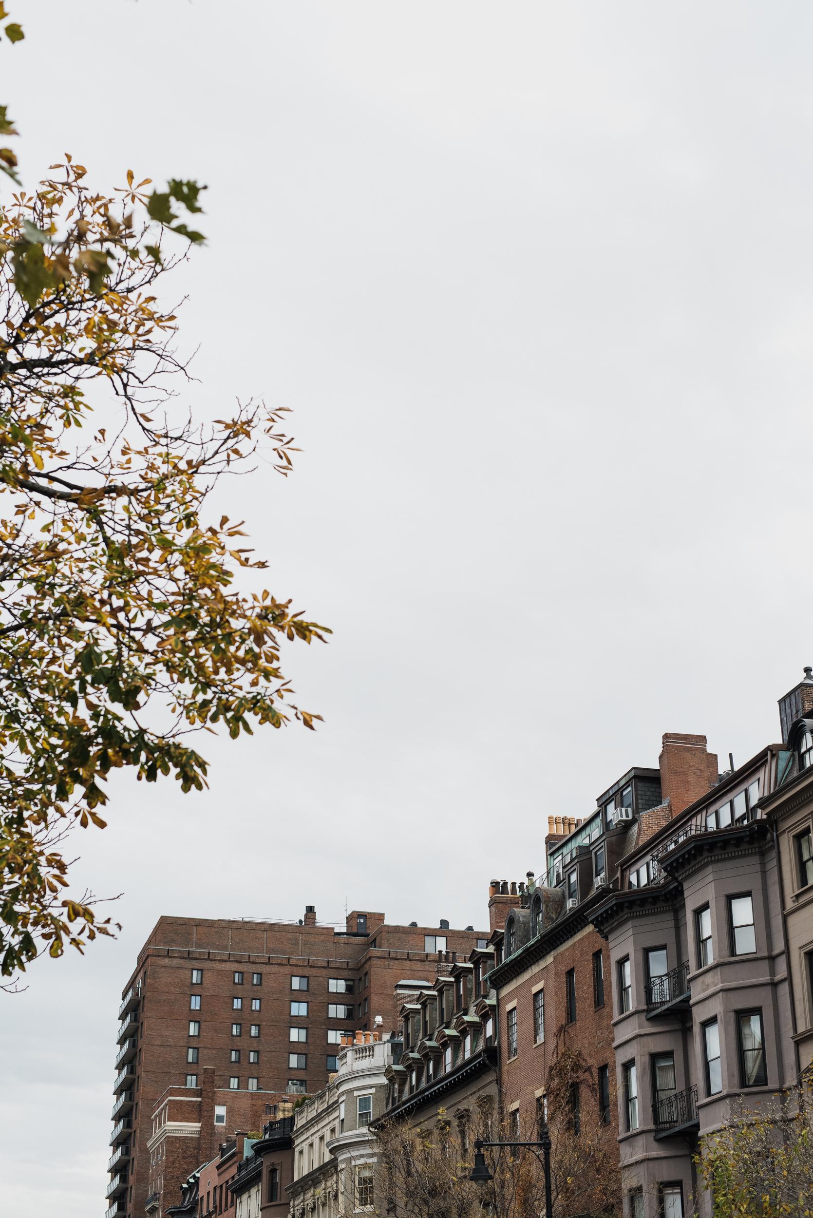 ©The Ryans Photography - Boston, Massachusetts -001.jpg
