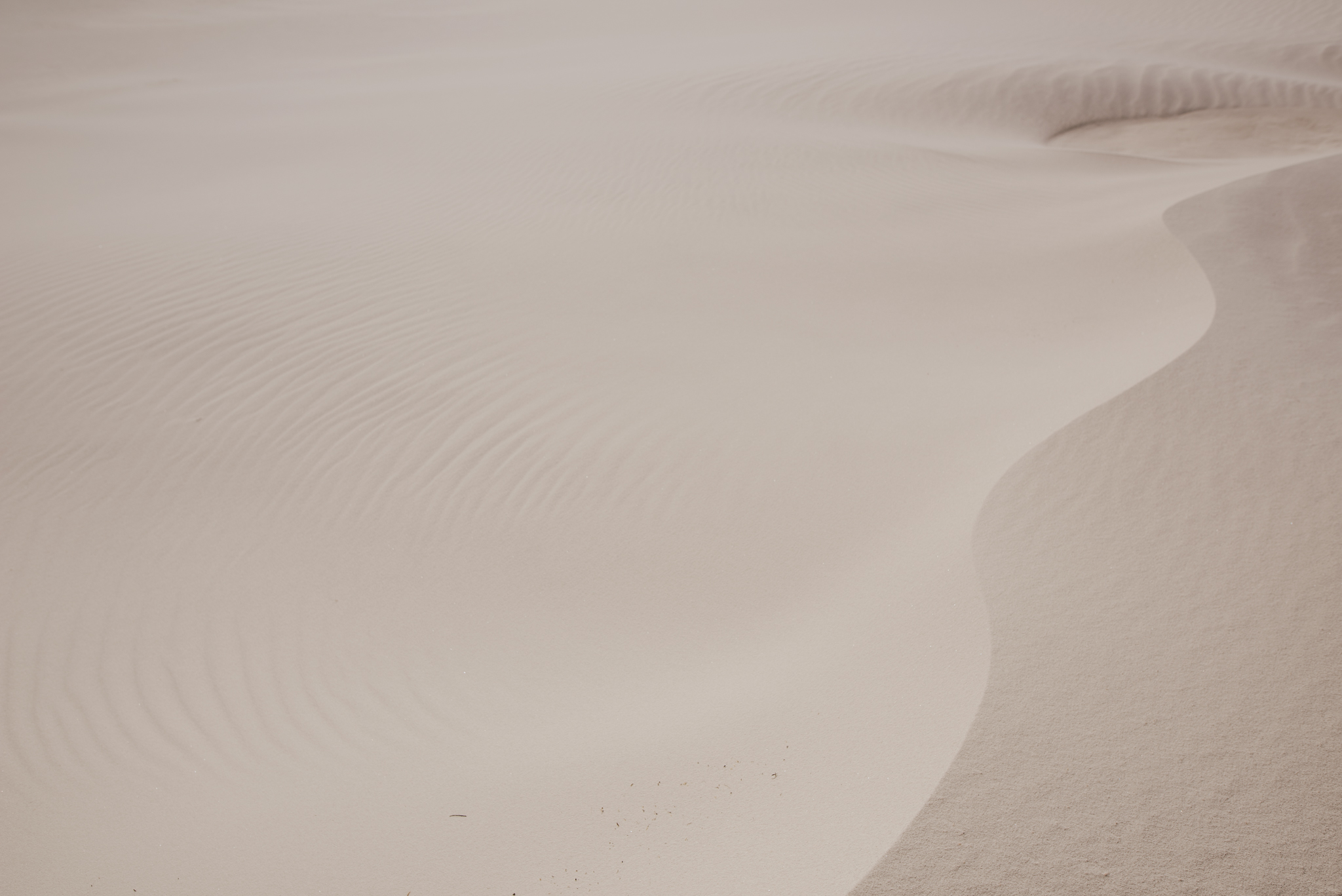 ©The-Ryans-Photography---White-Sands-National-Monument,-New-Mexico-Travel-031.jpg