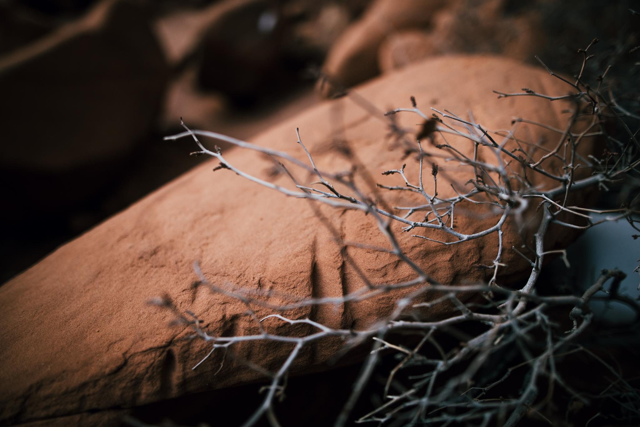 ©The-Ryans-Photography---Arches-National-Park-Moab-Utah-Travel-020.jpg