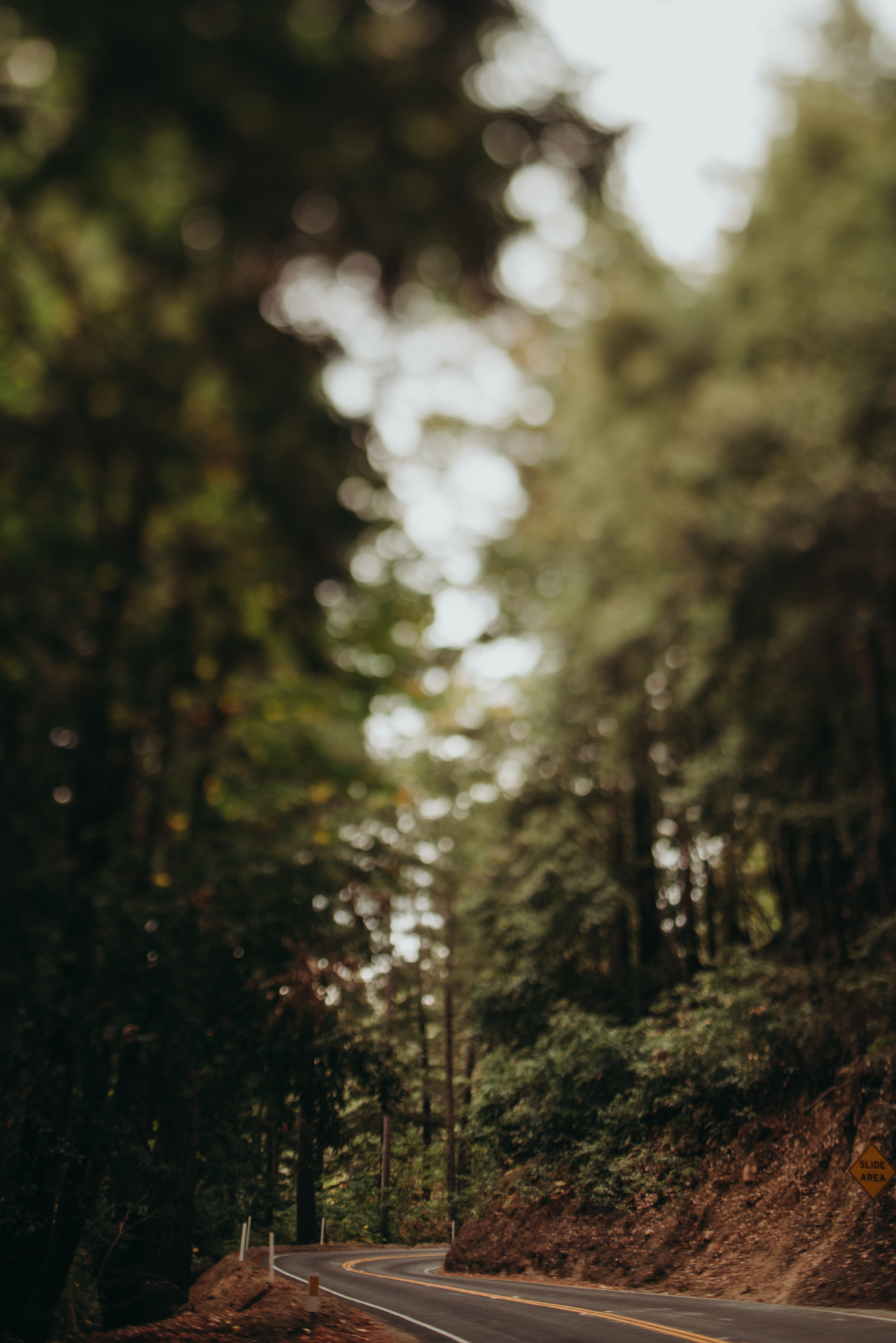 ©The-Ryans-Photography---Santa-Cruz-Lifestyle-Travel-004.jpg