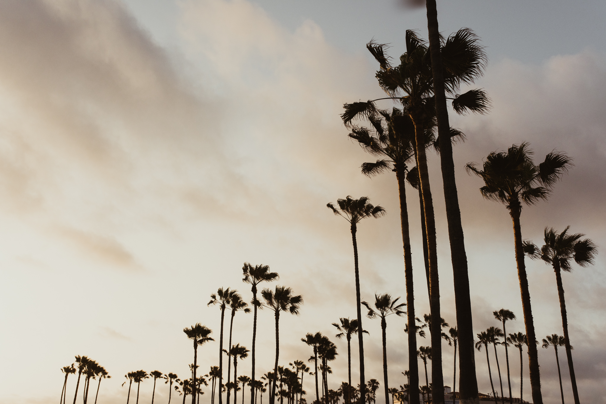©The Ryans Photography - Venice Beach-16.jpg