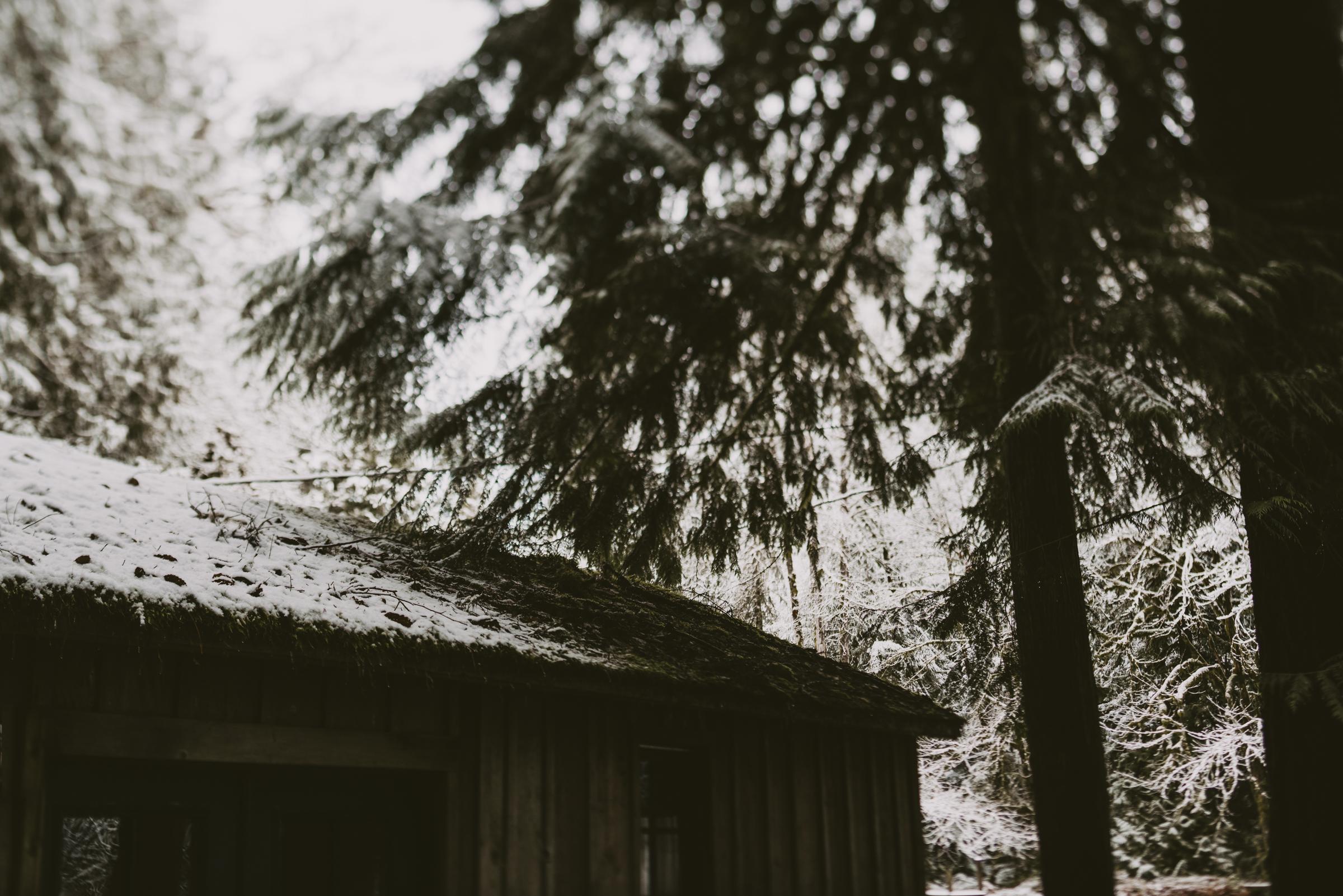 ©TheRyans- Winter Travel, Colton Oregon -13.jpg