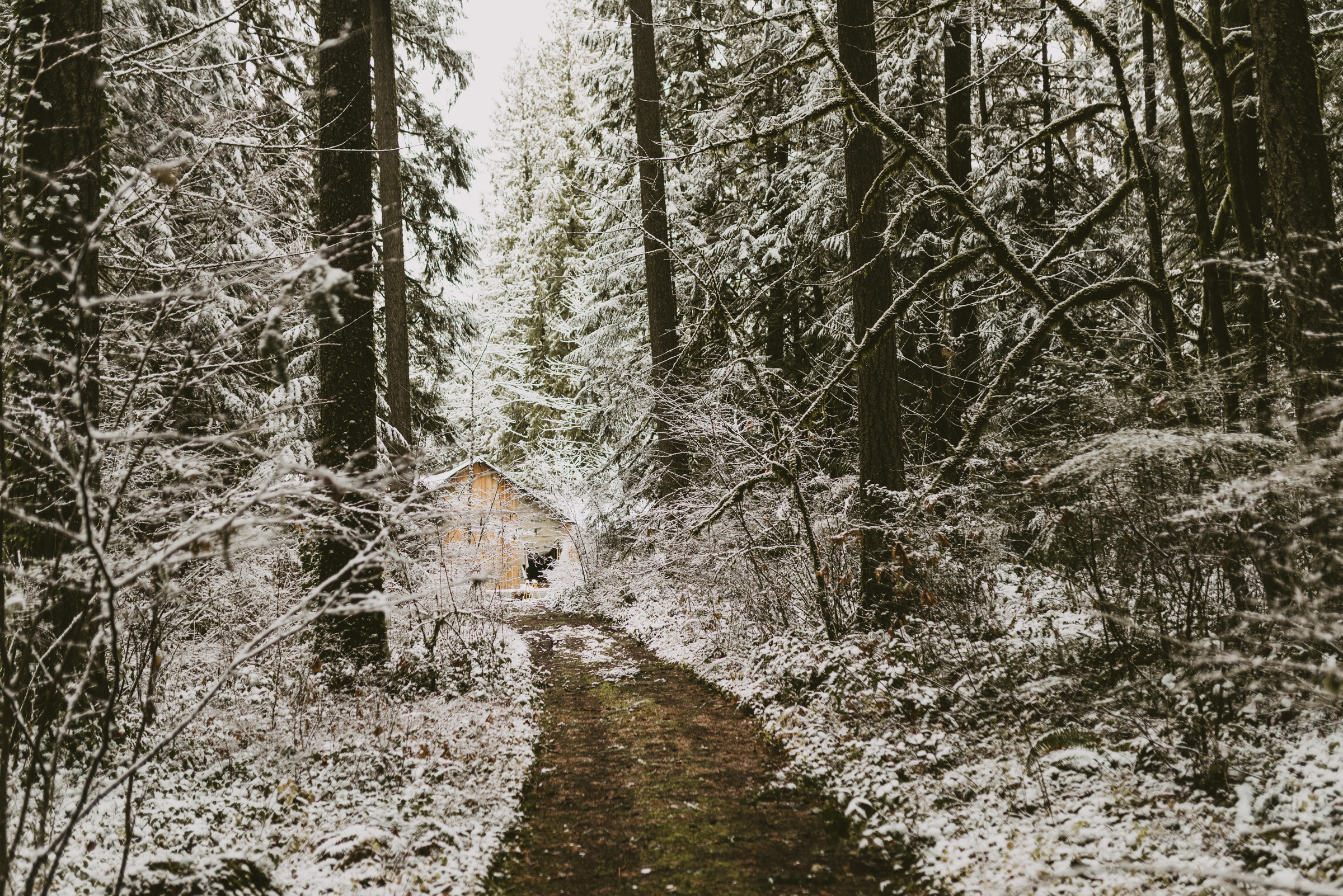 ©TheRyans- Winter Travel, Colton Oregon -28.jpg