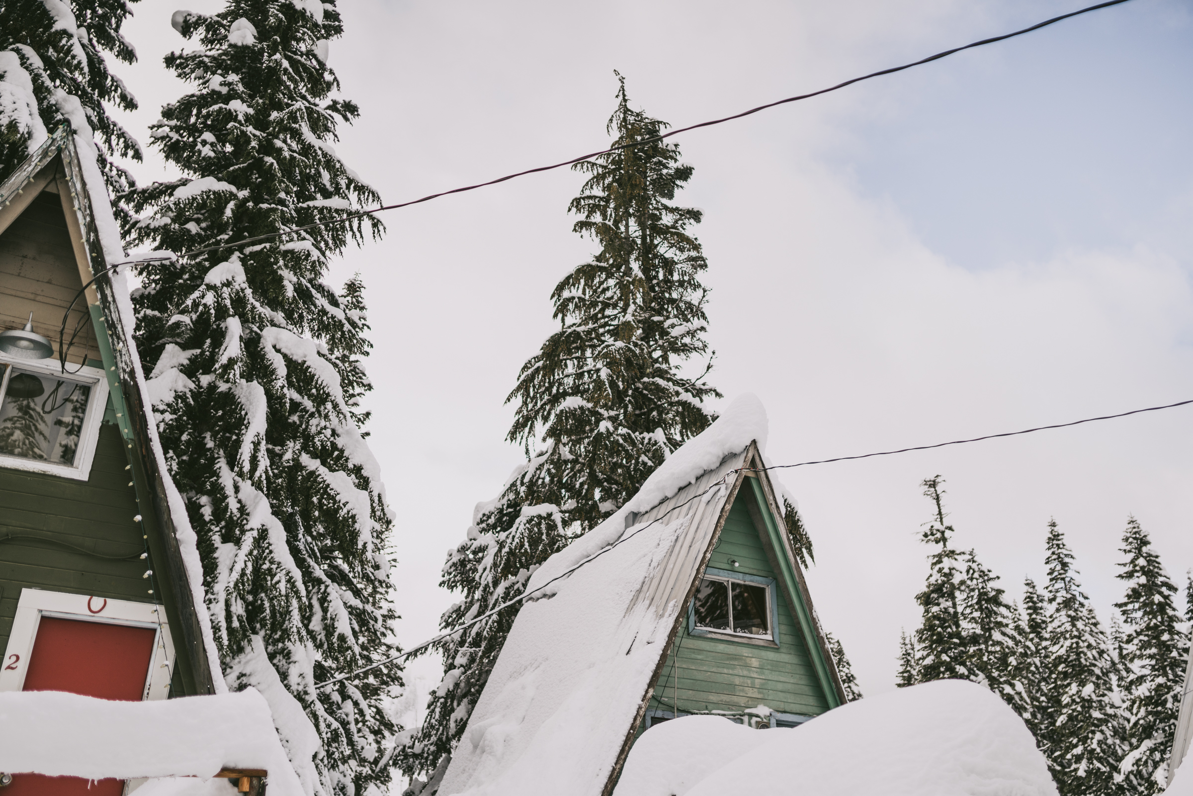 ©The Ryans Photography - Snoqualmie Travel, Washington-8.jpg
