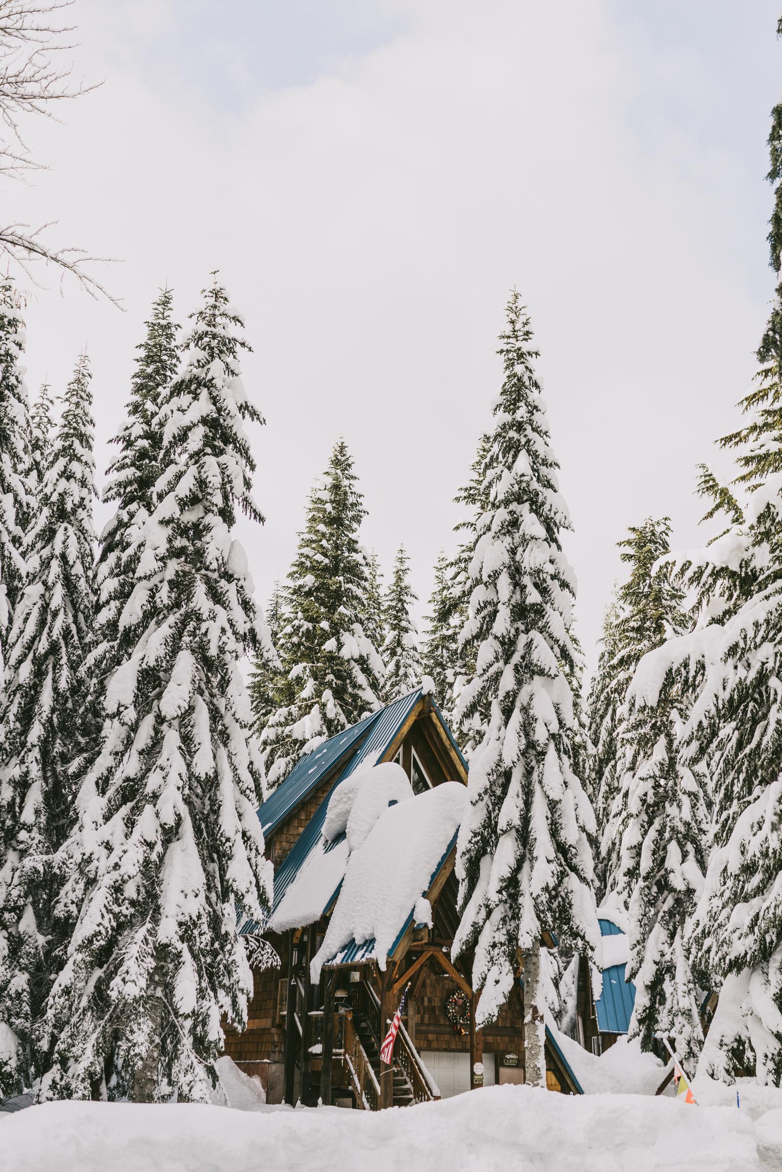 ©The Ryans Photography - Snoqualmie Travel, Washington-9.jpg