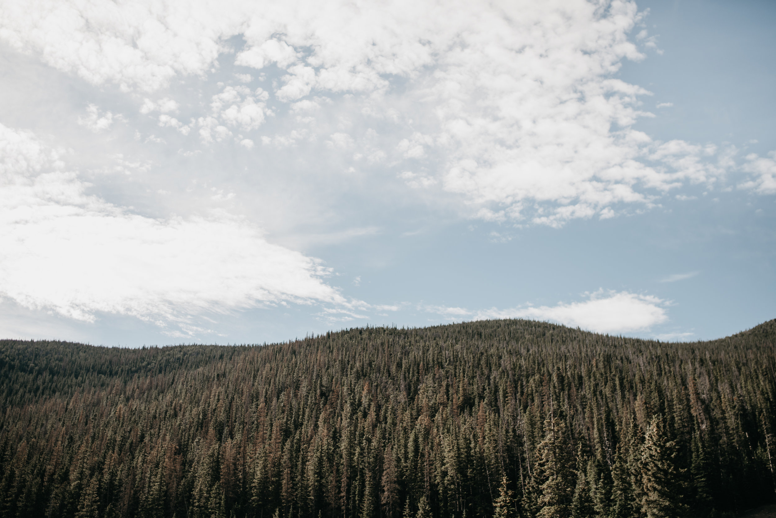 © The Ryans Photo - Estes Park, Colorado-19.jpg