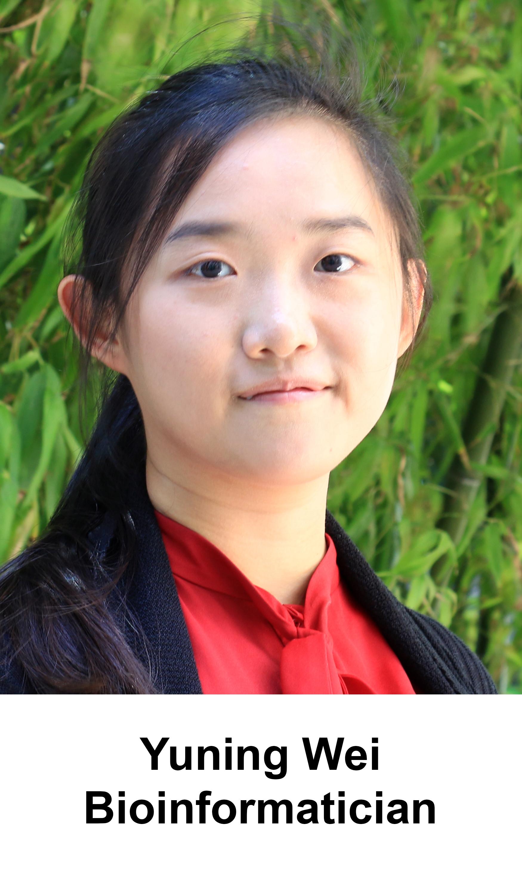KL.HCL.yuning.wei.2_150x250.jpg