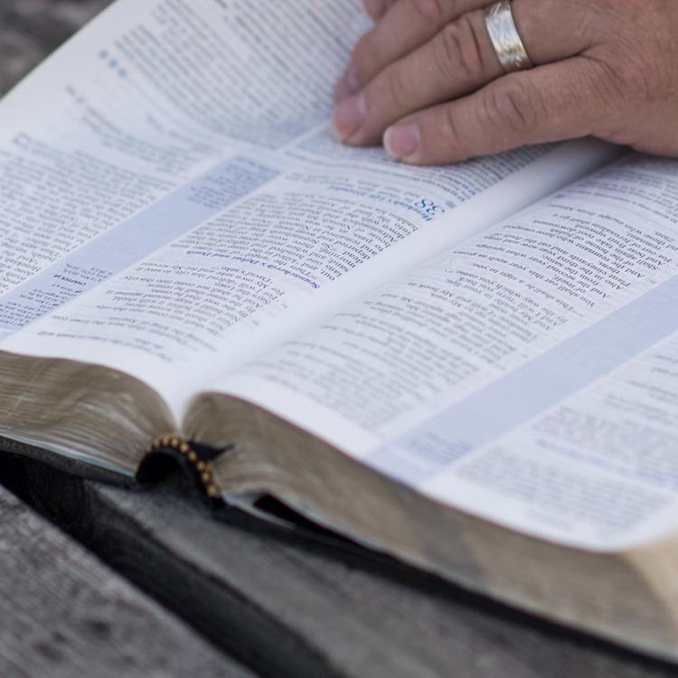 DISCIPLEMAKING COMMUNITIES -