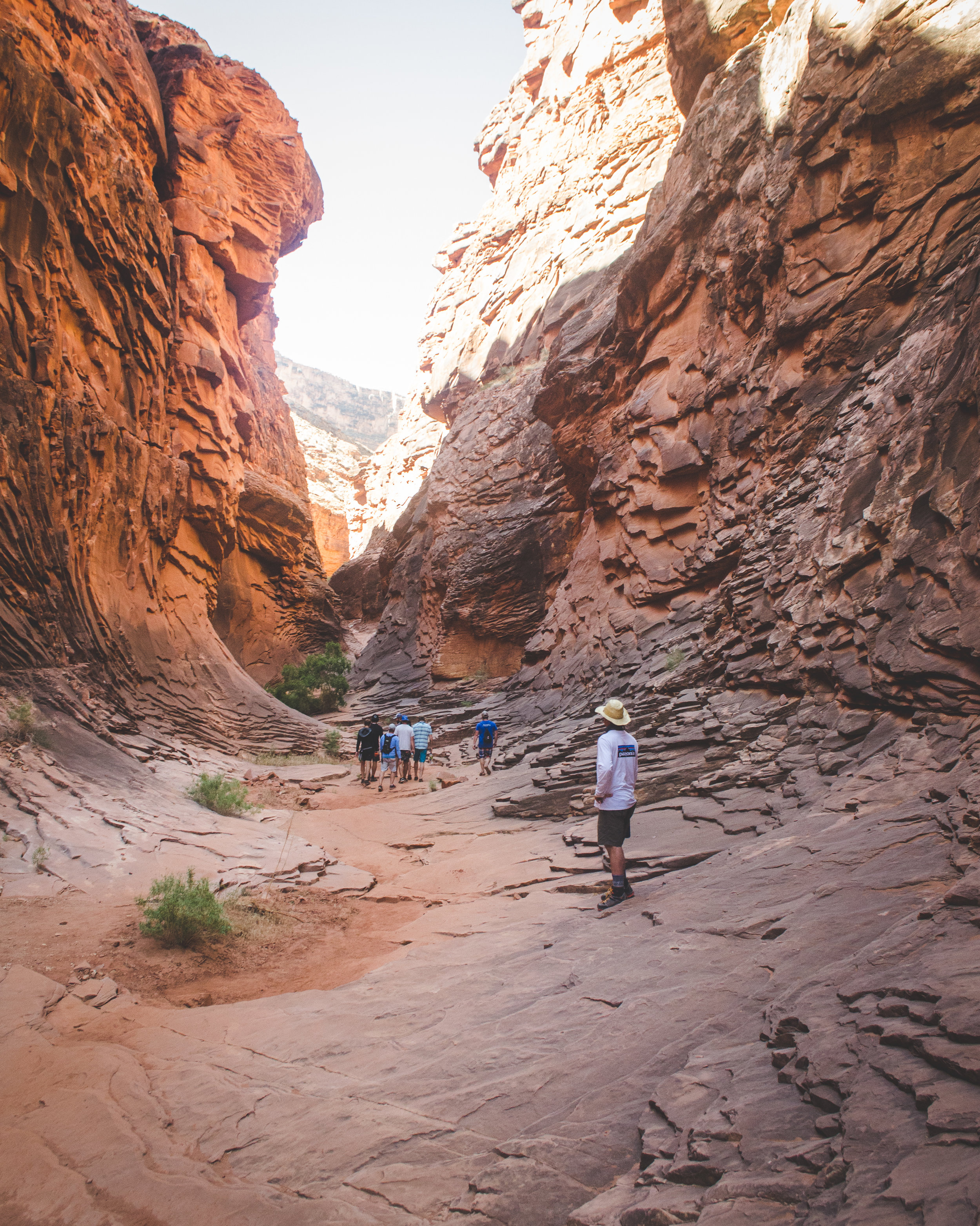 2018 Grand Canyon Trip WL-14.jpg