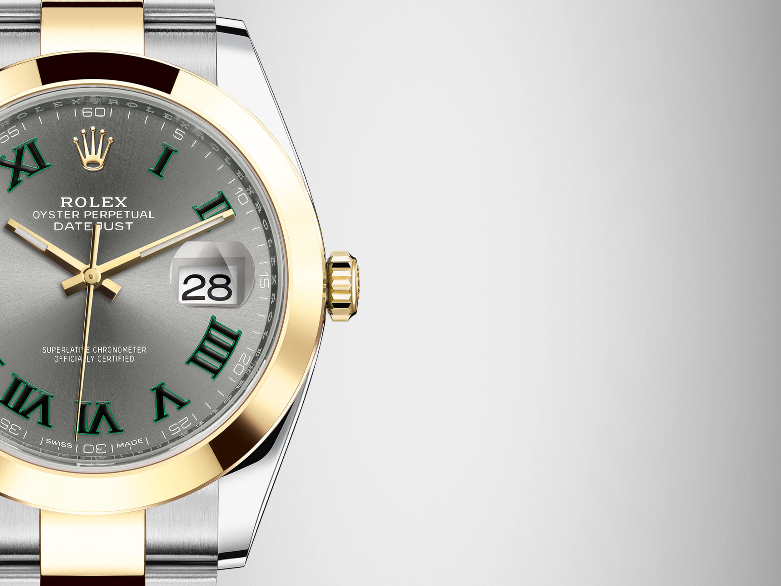 The Rolex Watches -