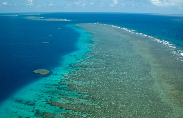 One of the northern Ribbon Reefs....
