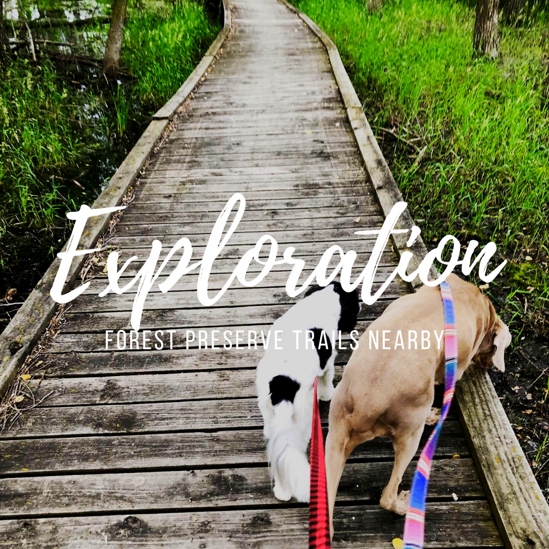 With over 4 miles of forest preserve trails within walking distance, your pet will never get bored with the same old scenery again!