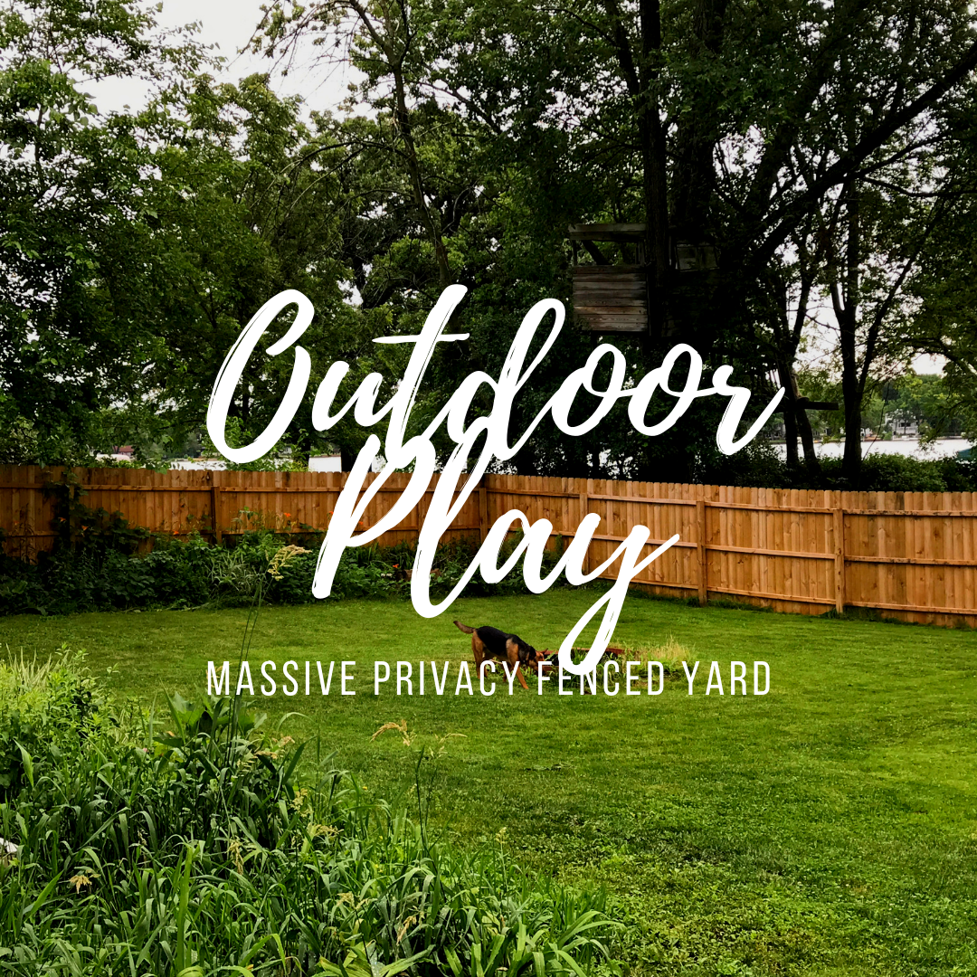 Our property has loads of space for running, chasing, wrestling and more! Our yard is completely enclosed by a 7ft privacy fence to keep your pet safe and secure.