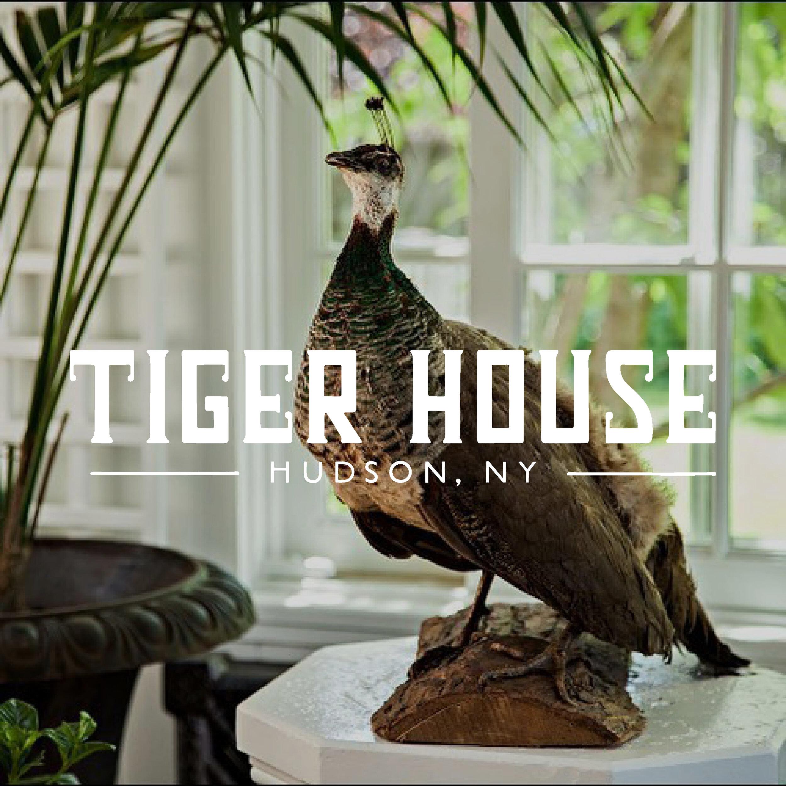 square graphics - 2019 Tiger house4.jpg
