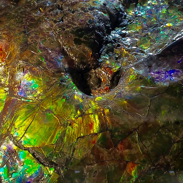 Alien Surface copy.jpg