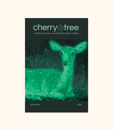 Cherry Tree Editor-in-Chief and Poetry Editor JAMES ALLEN HALL - in conversation with Wendy Ferguson