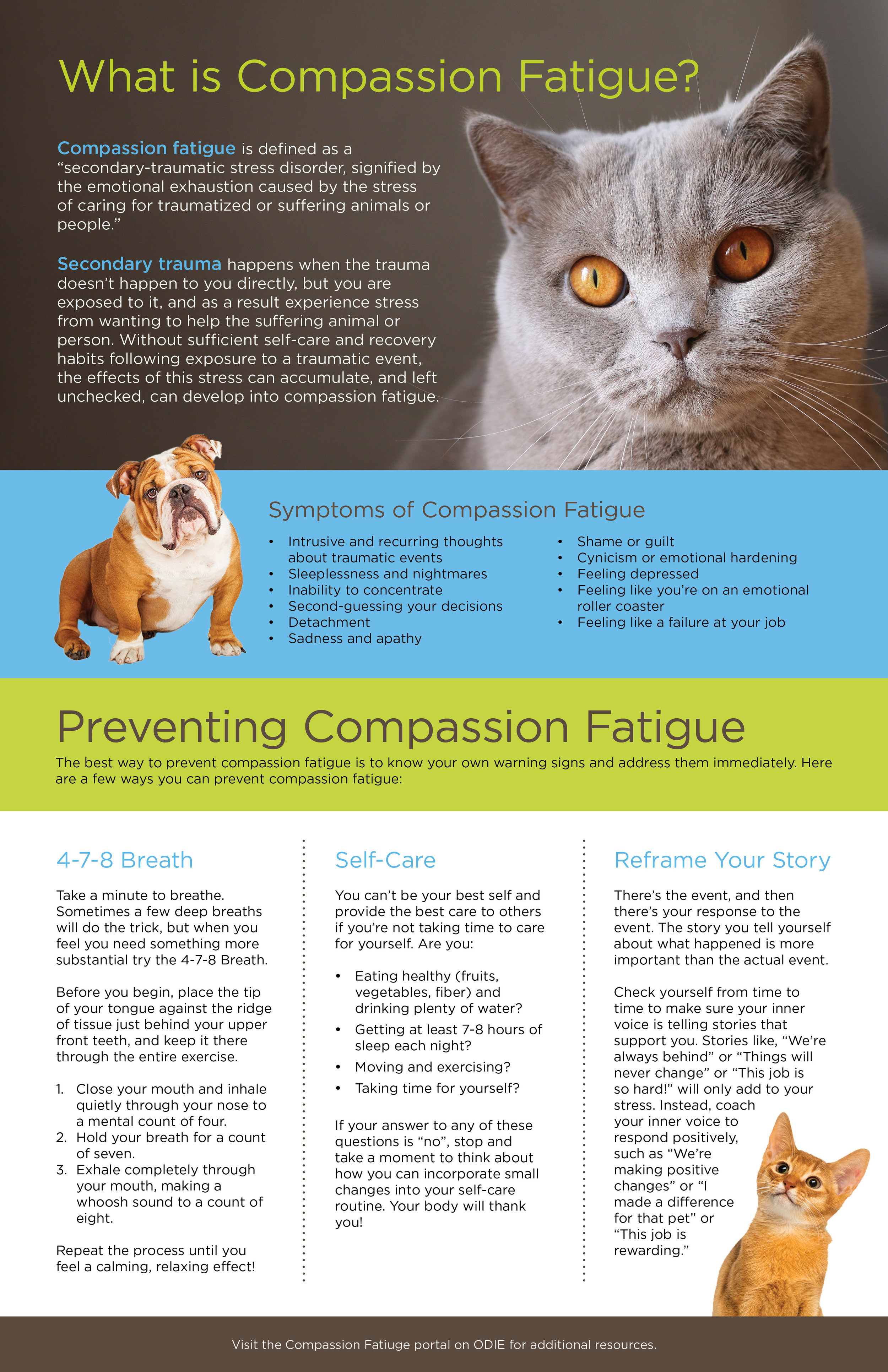 AHS Compassion Fatiuge JA1 v2.0.jpg
