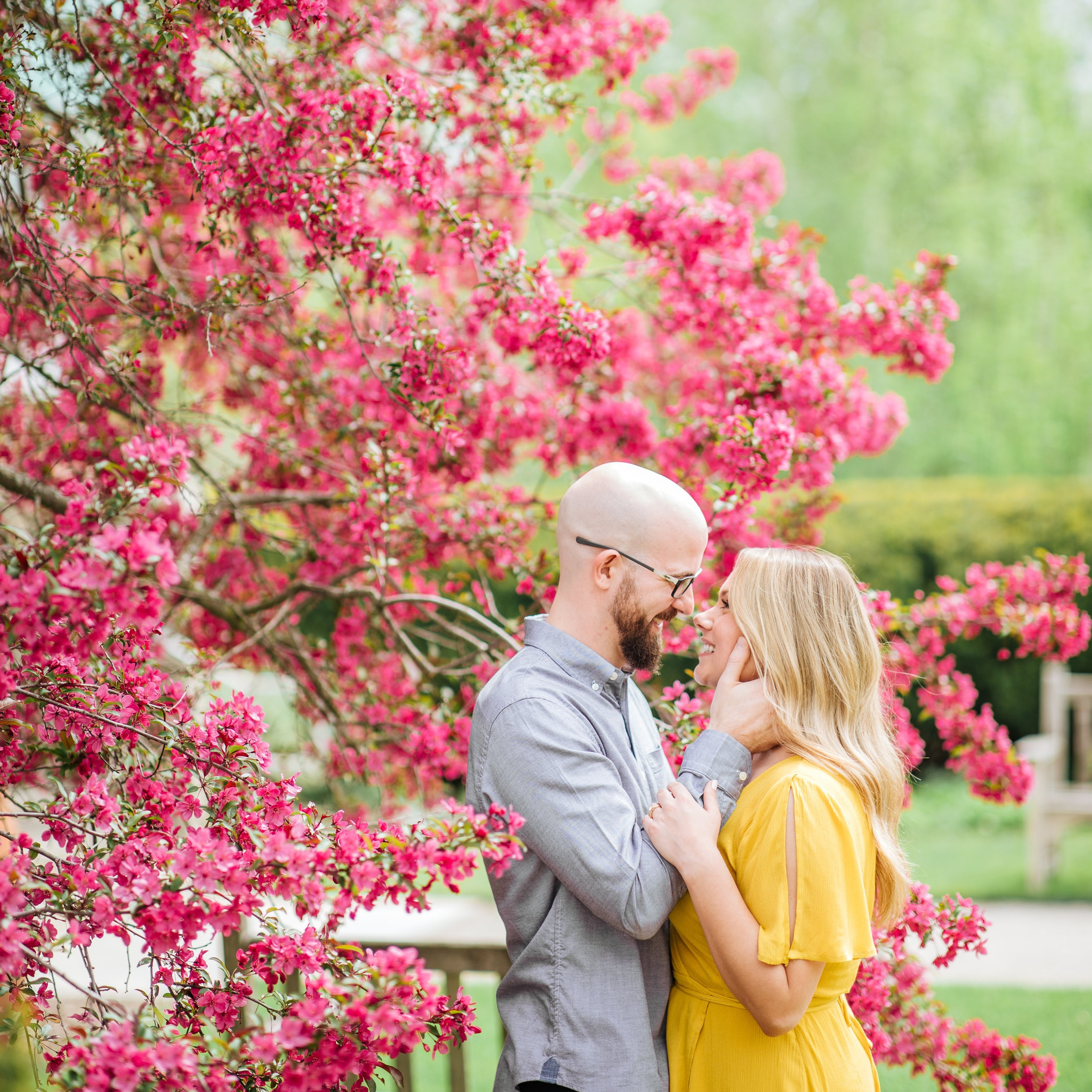 spring ann arbor matthaei botanical garden engagement session