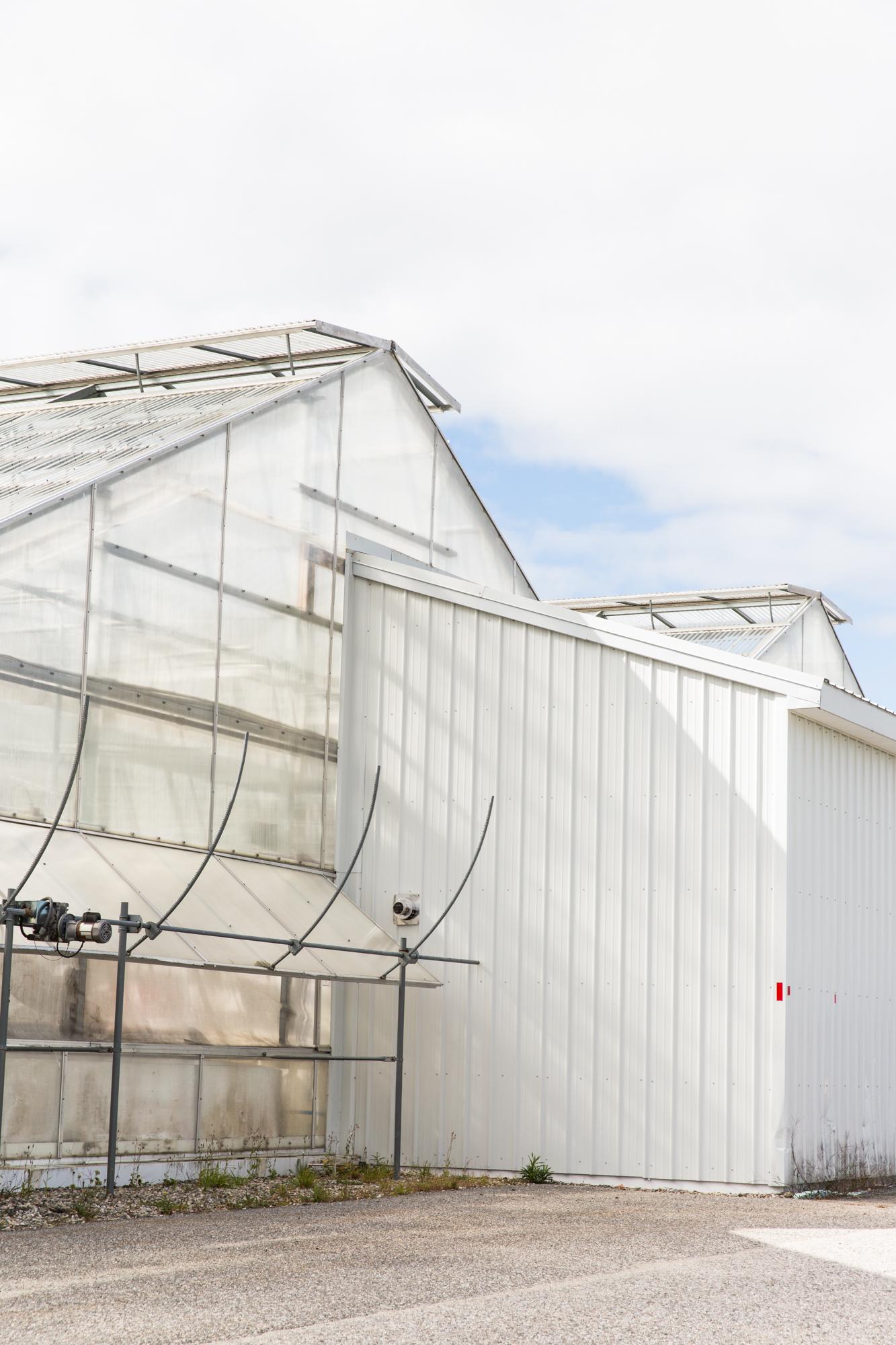 GRybus-Blog-Fresh-Greenhouses-9673.jpg