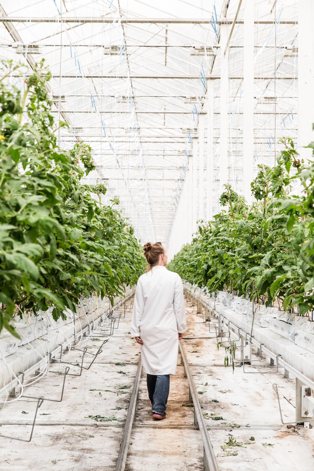 GRybus-Blog-Fresh-Greenhouses-9777.jpg
