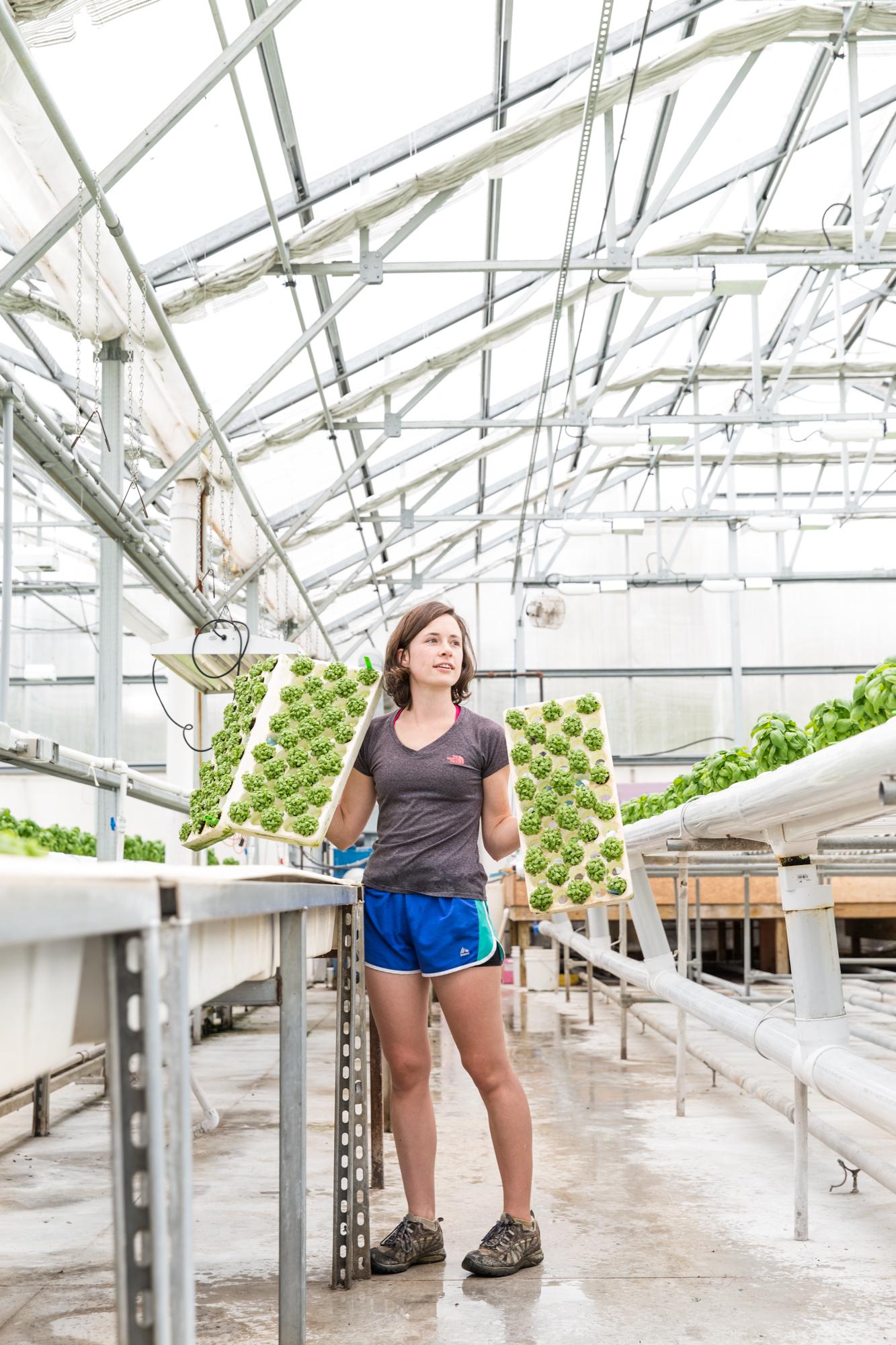 GRybus-Blog-Fresh-Greenhouses-9129.jpg