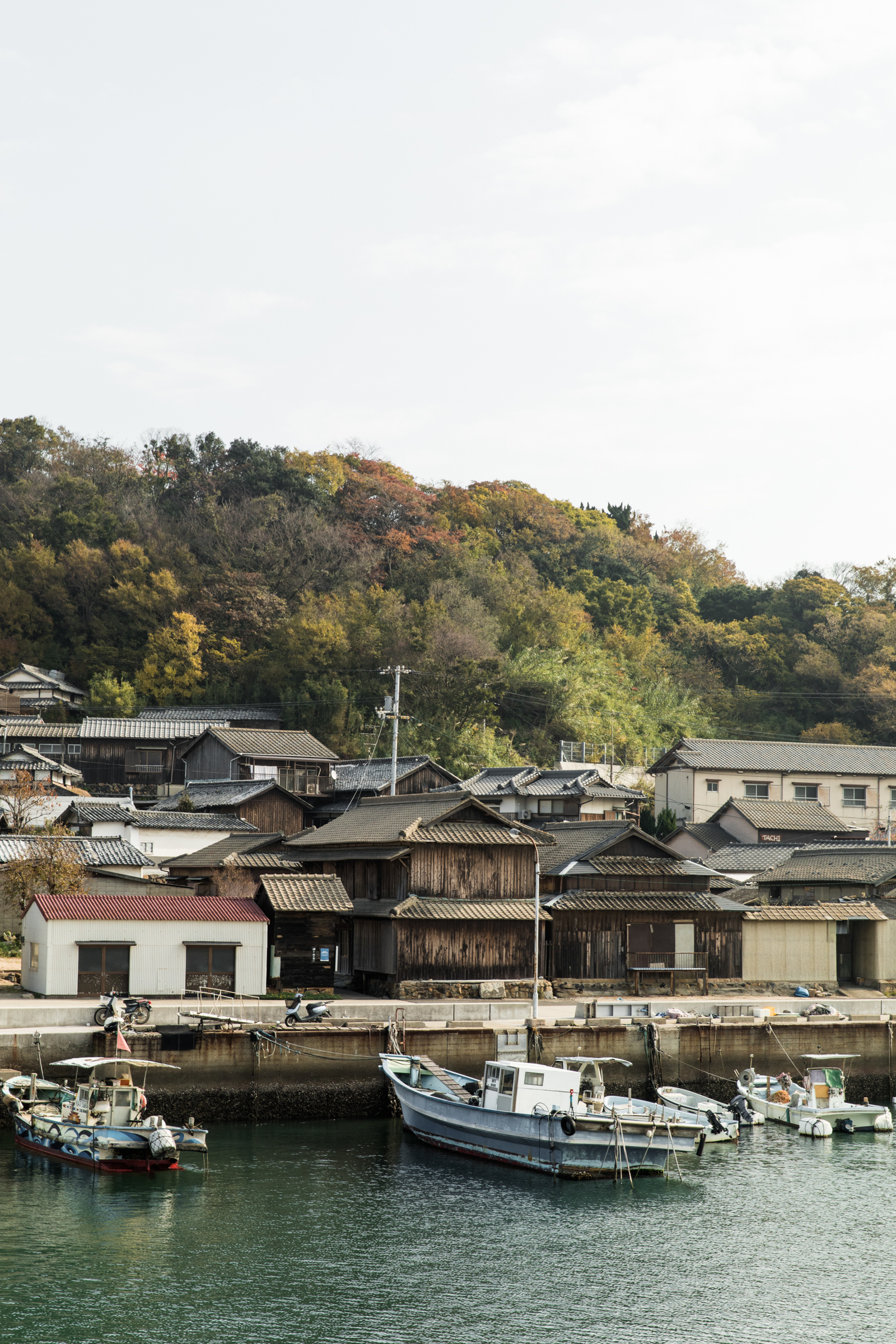 AGRybus-Blog-Japan-001-4267.jpg
