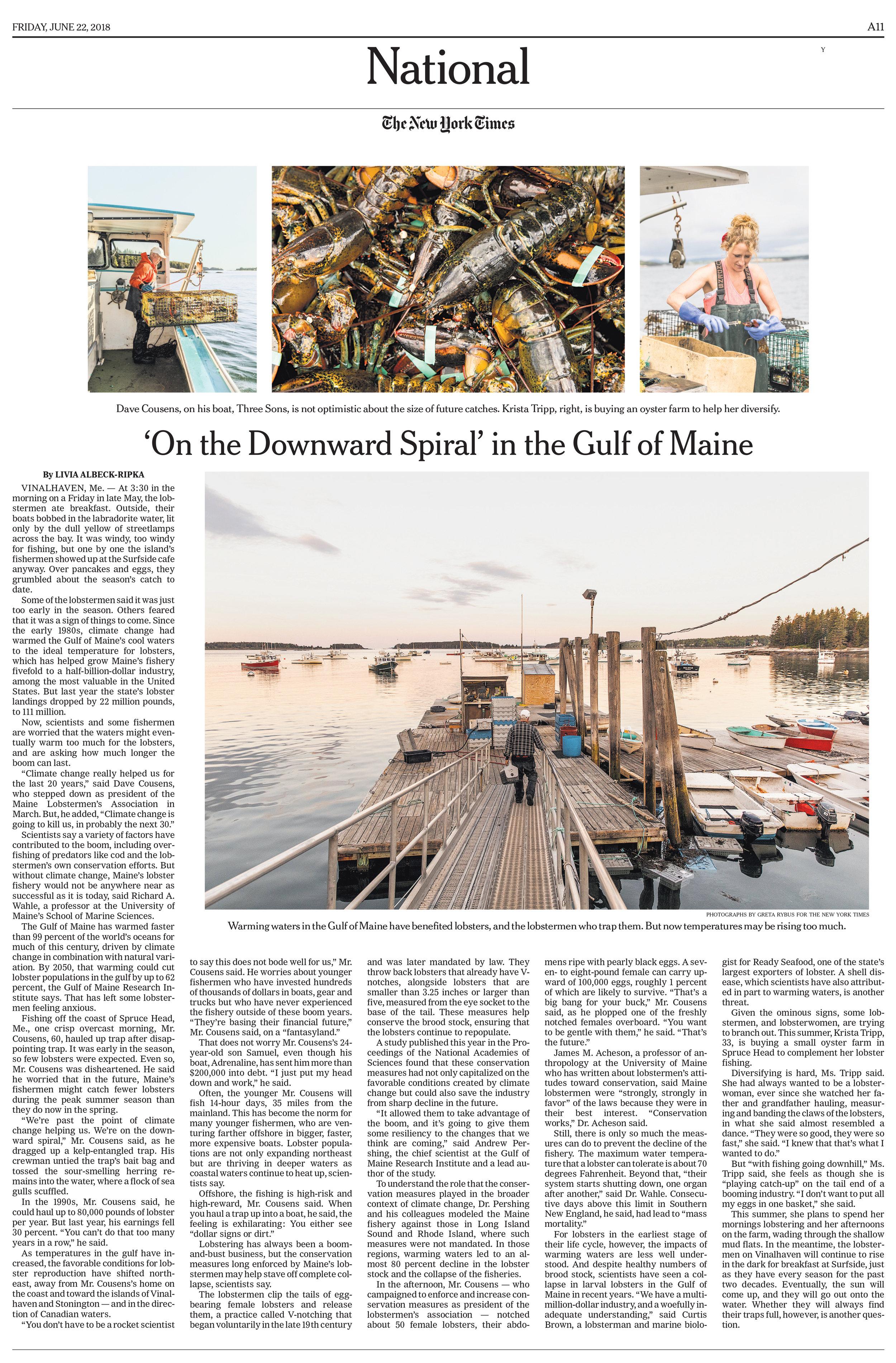 NYT-Climate-lobster 2-1.jpg