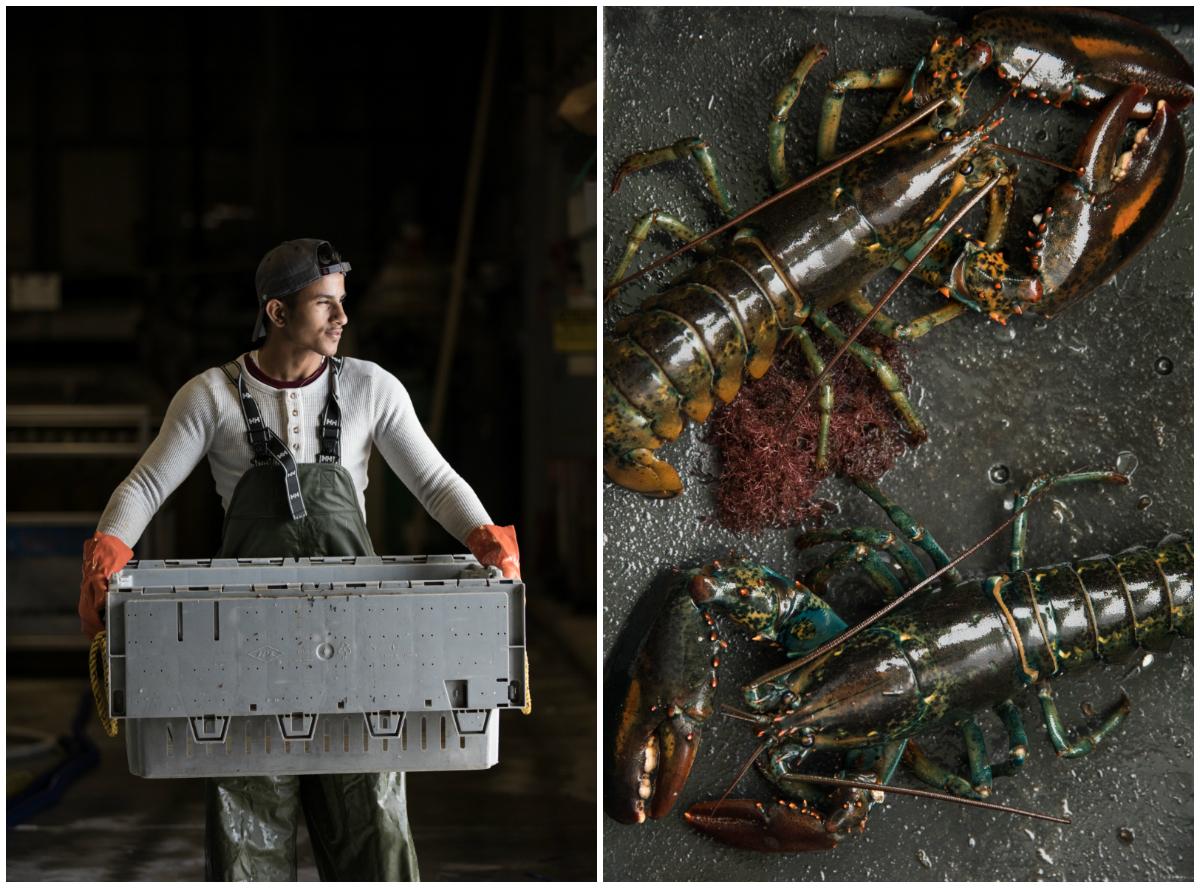 GRybus-NYT-Lobster-01.jpg